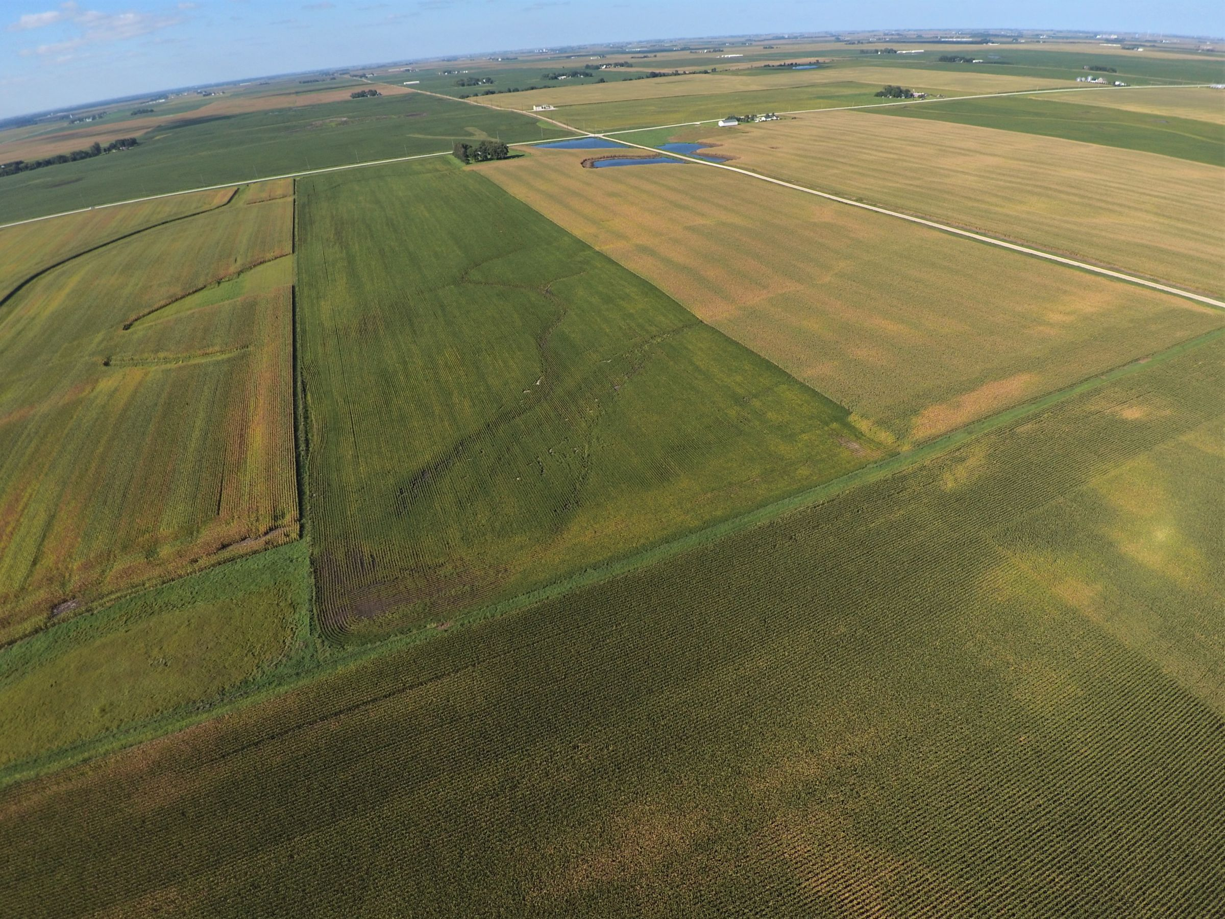 PeoplesCompany-Farmland in Hamilton County-IA-Kantor-Ave-5