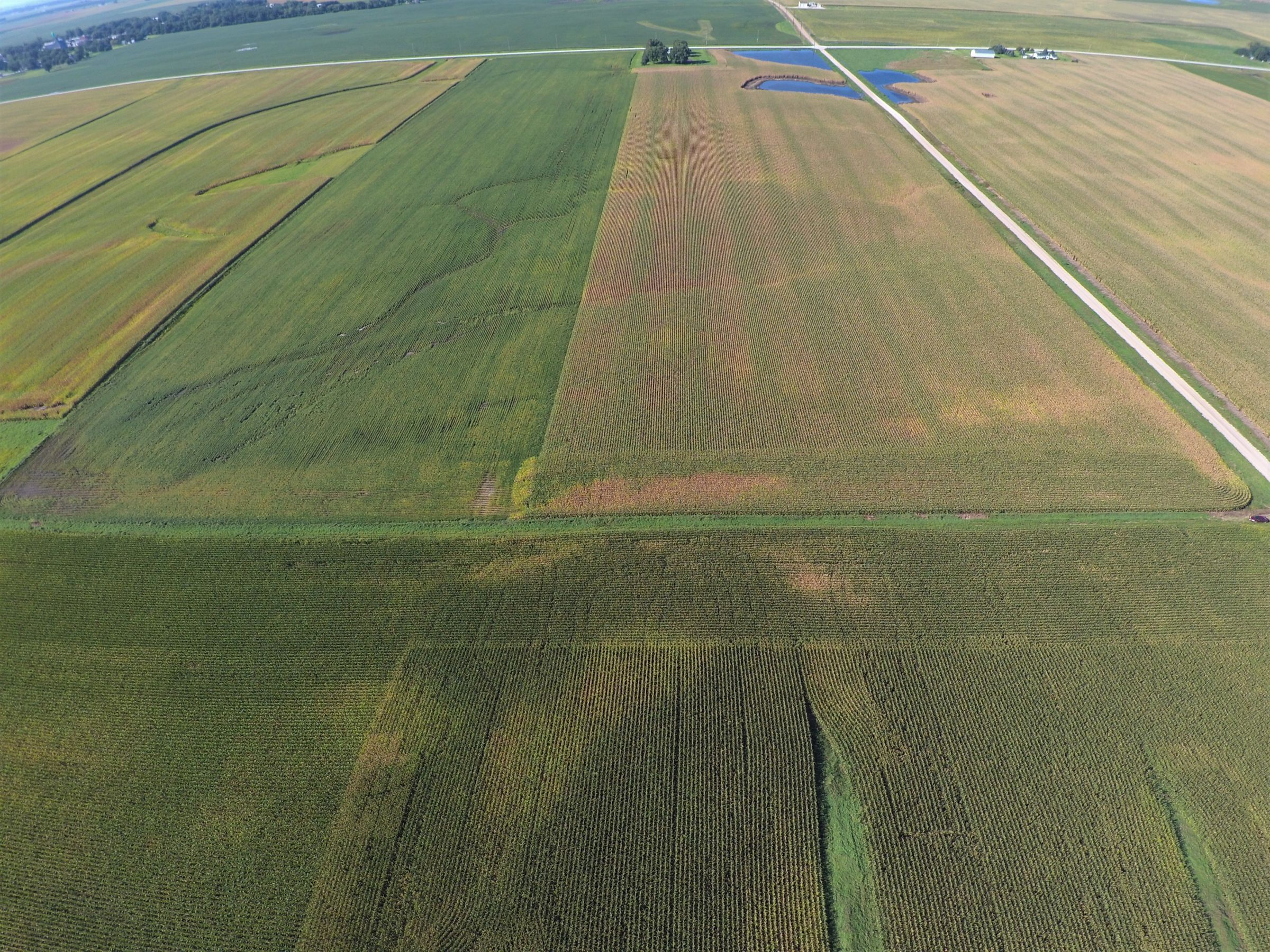 PeoplesCompany-Farmland in Hamilton County-IA-Kantor-Ave-6