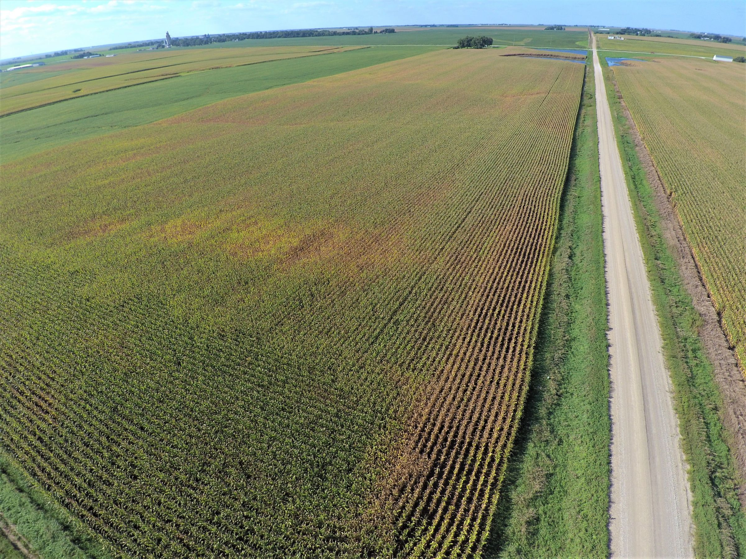 PeoplesCompany-Farmland in Hamilton County-IA-Kantor-Ave-4
