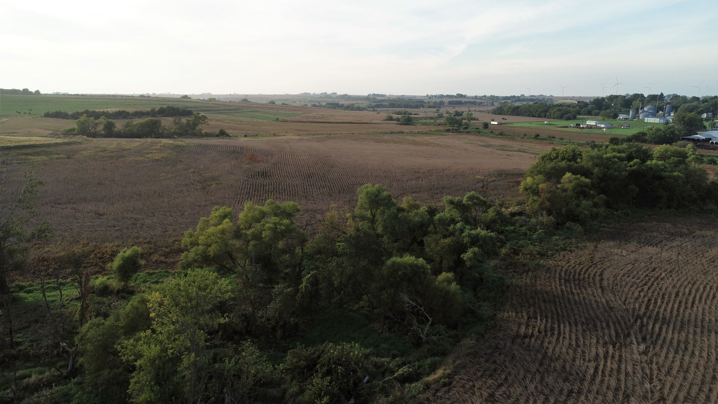 Cass County Iowa Farmland Photo 3