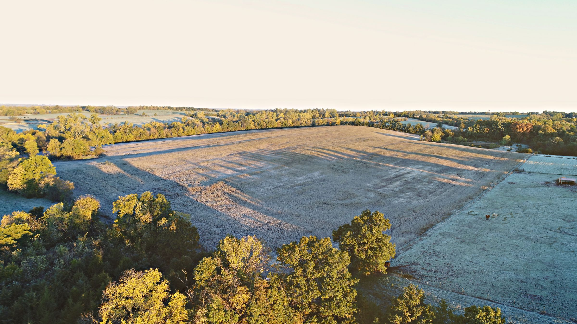 Gentry County, Missouri Farmland For Sale