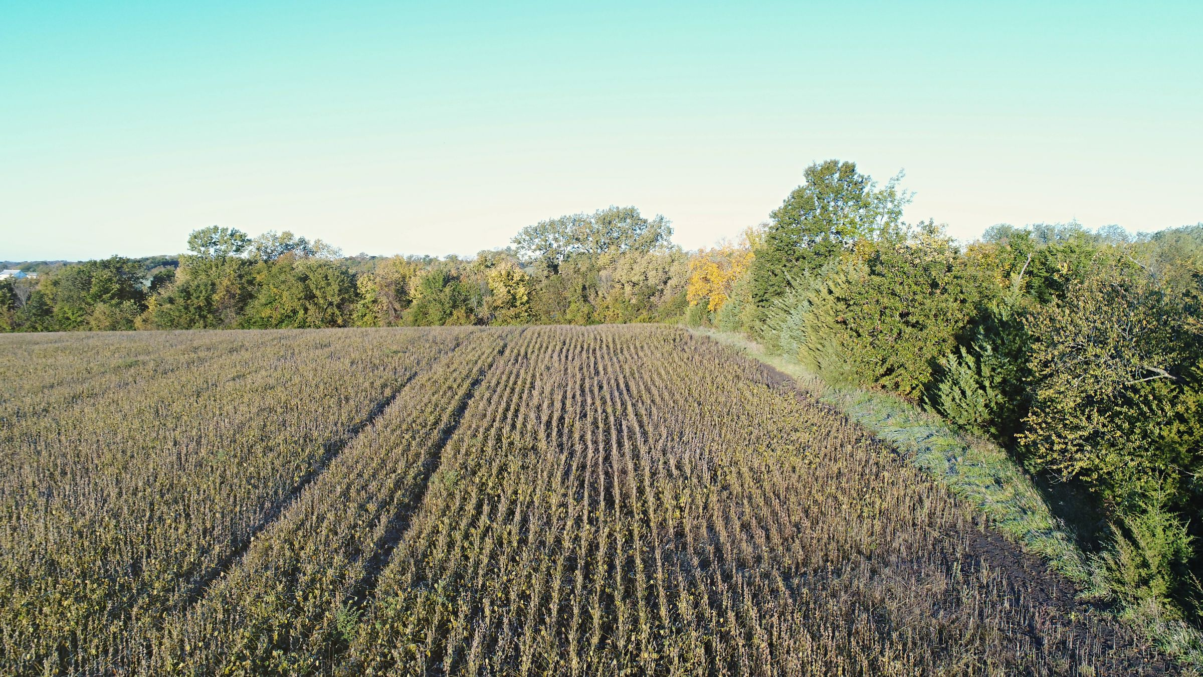 Farmland For Rent In Missouri