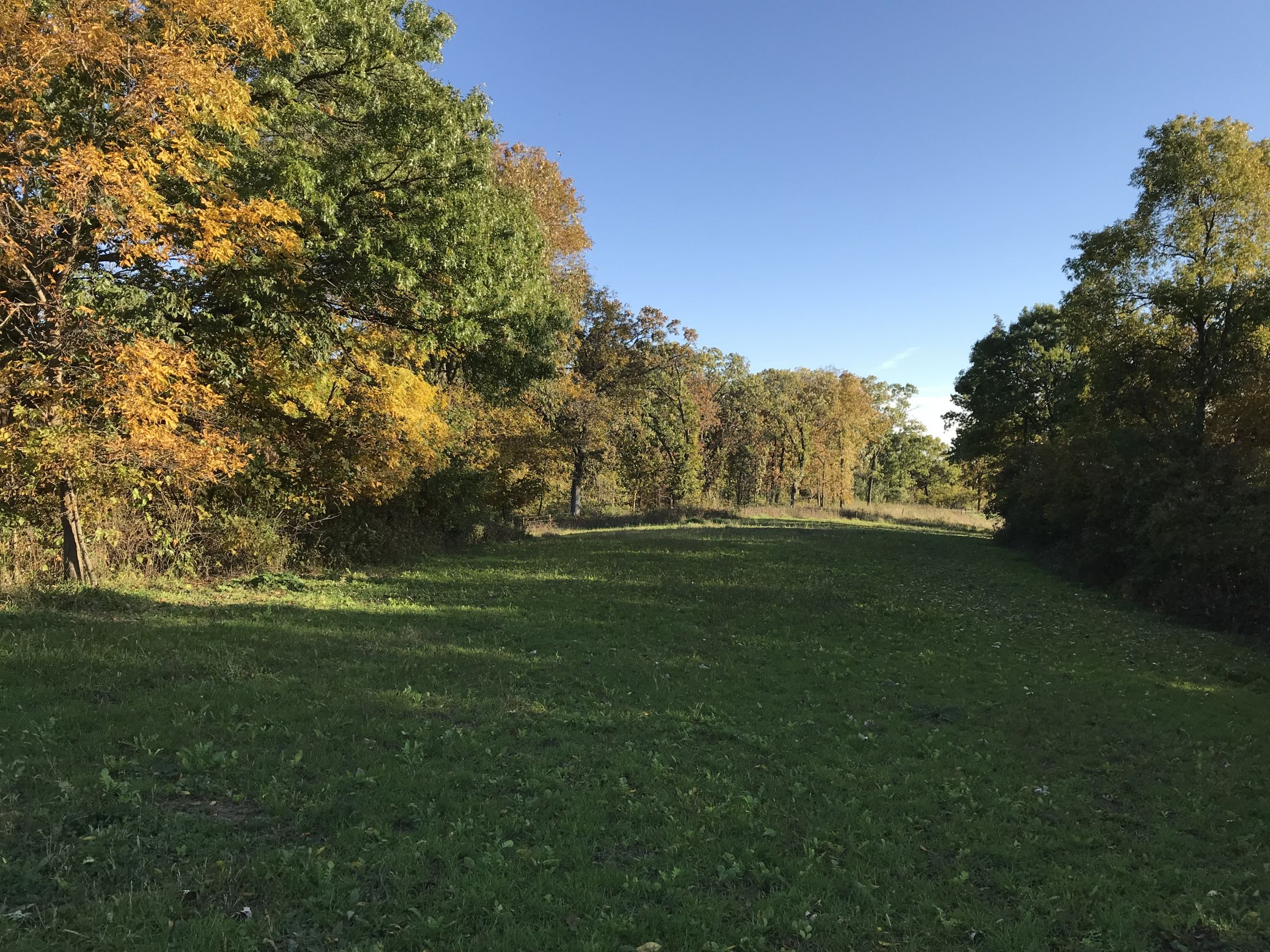 hunting farm for sale