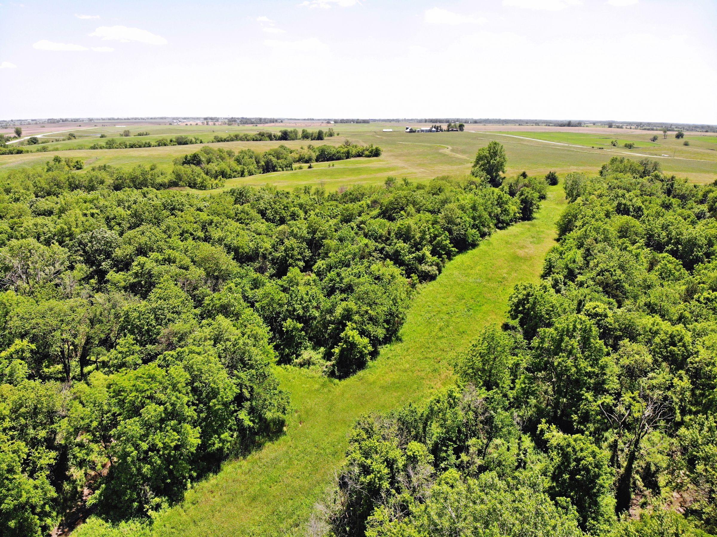 14497-78-acres-clarke-co-ia-3-2019-06-12-155646.jpg