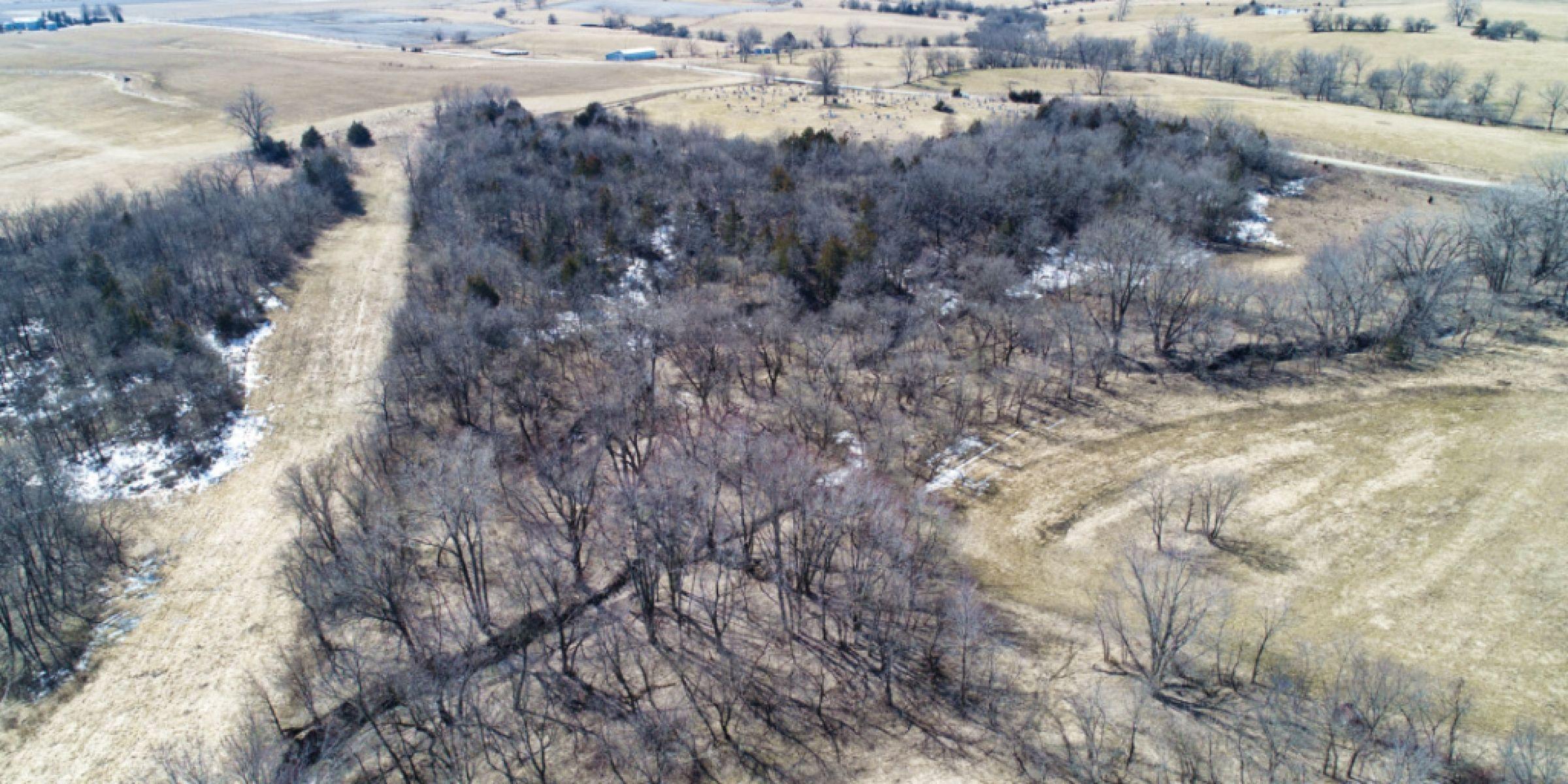 14497-78-acres-clarke-co-ia-4-2019-04-18-233645.jpg