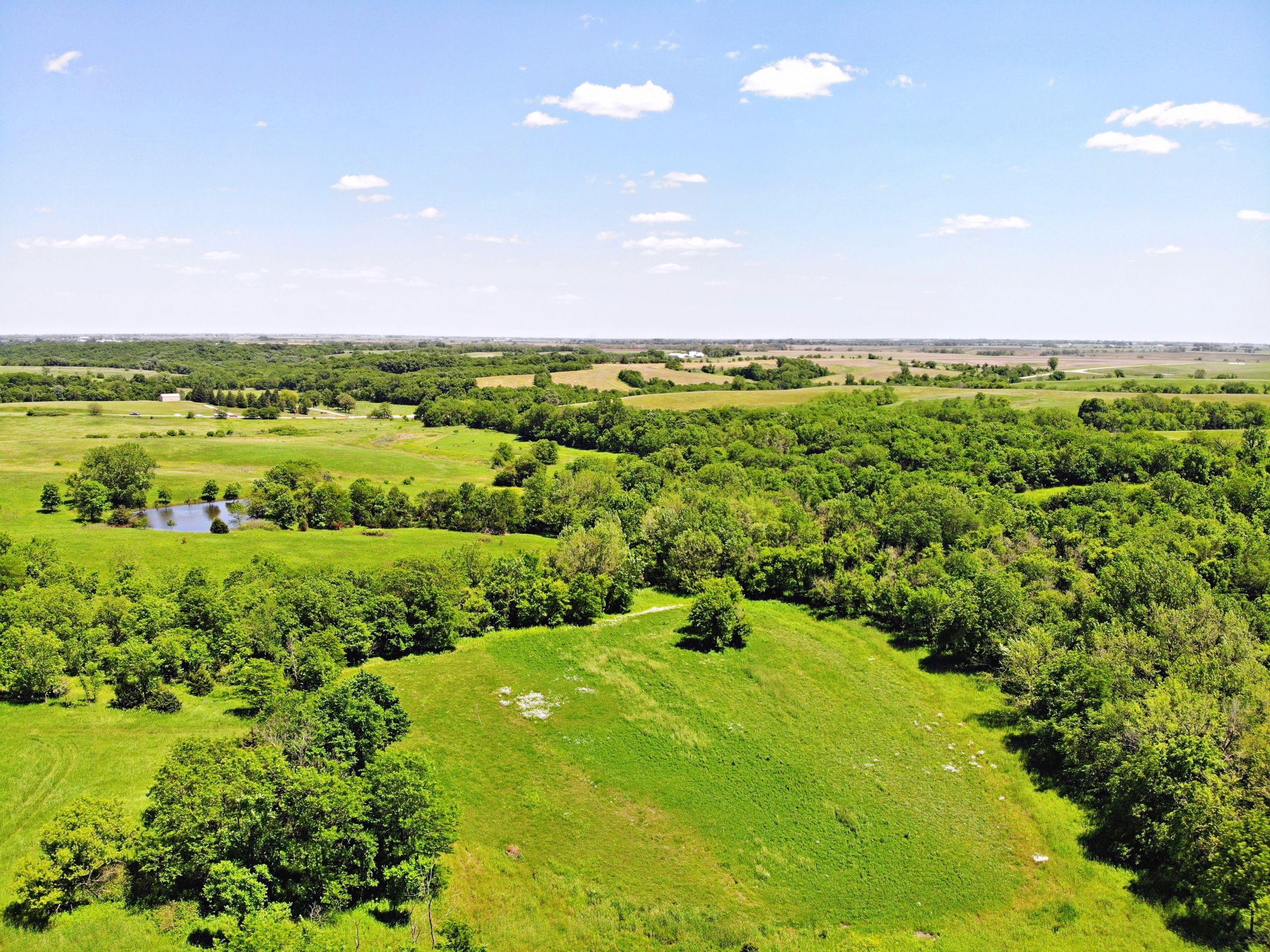 14497-78-acres-clarke-co-ia-4-2019-06-12-160116.jpg