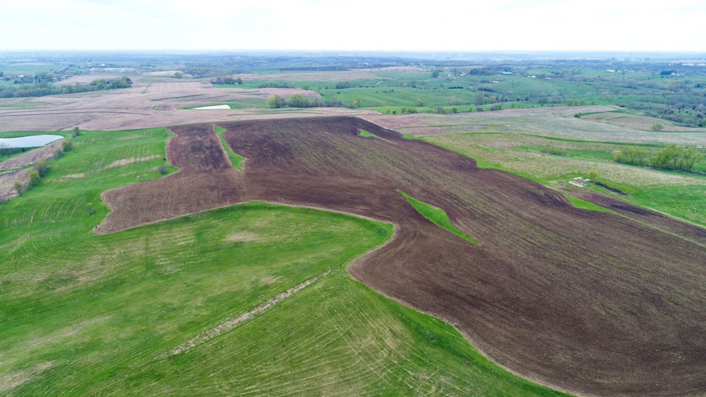 Peoples Company Land for Sale in Warren County, Iowa - 132 acres - 130th Ave. Lucas, IA 50151 - 14502