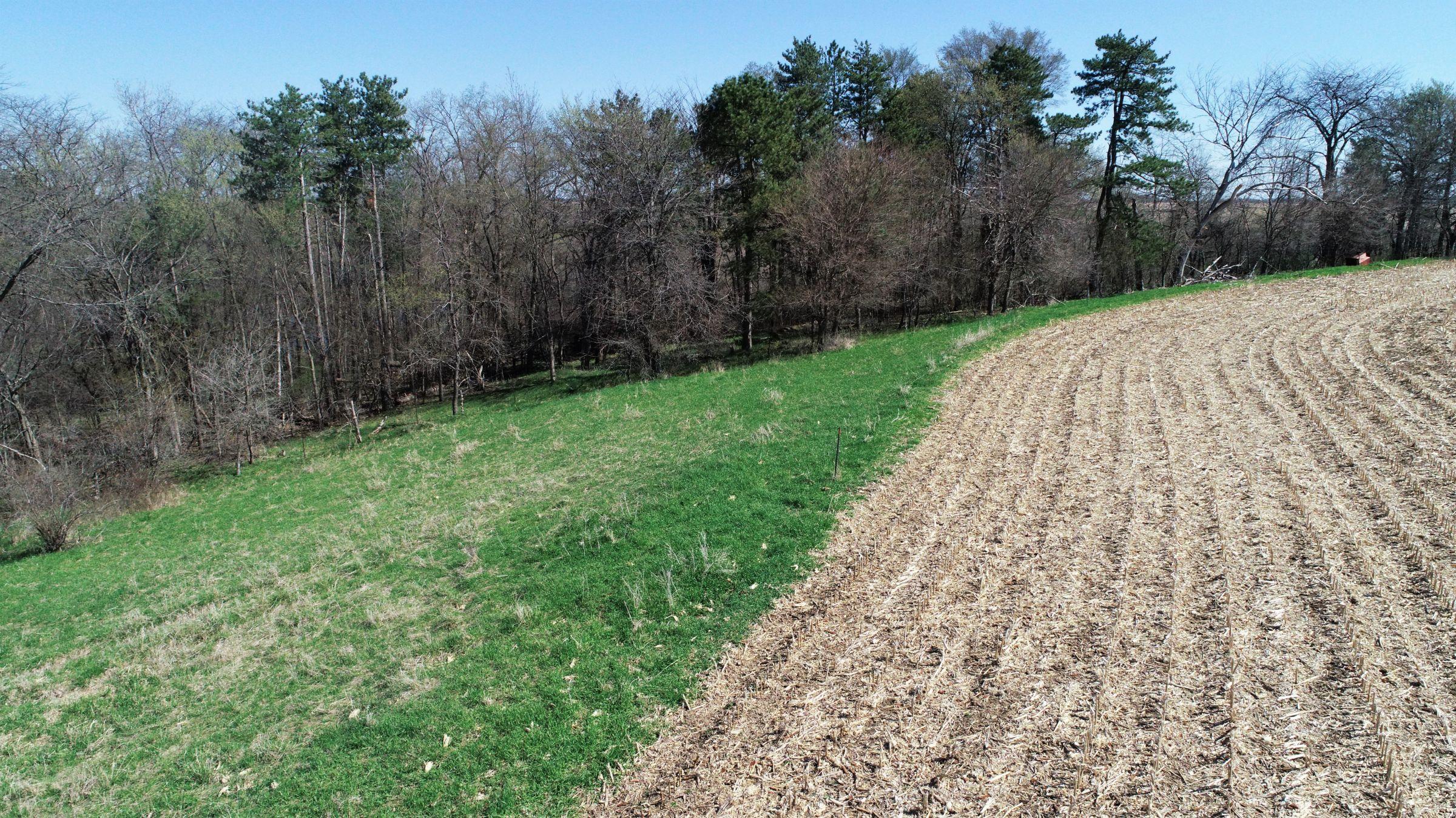 Jasper County Farmland Photo 14