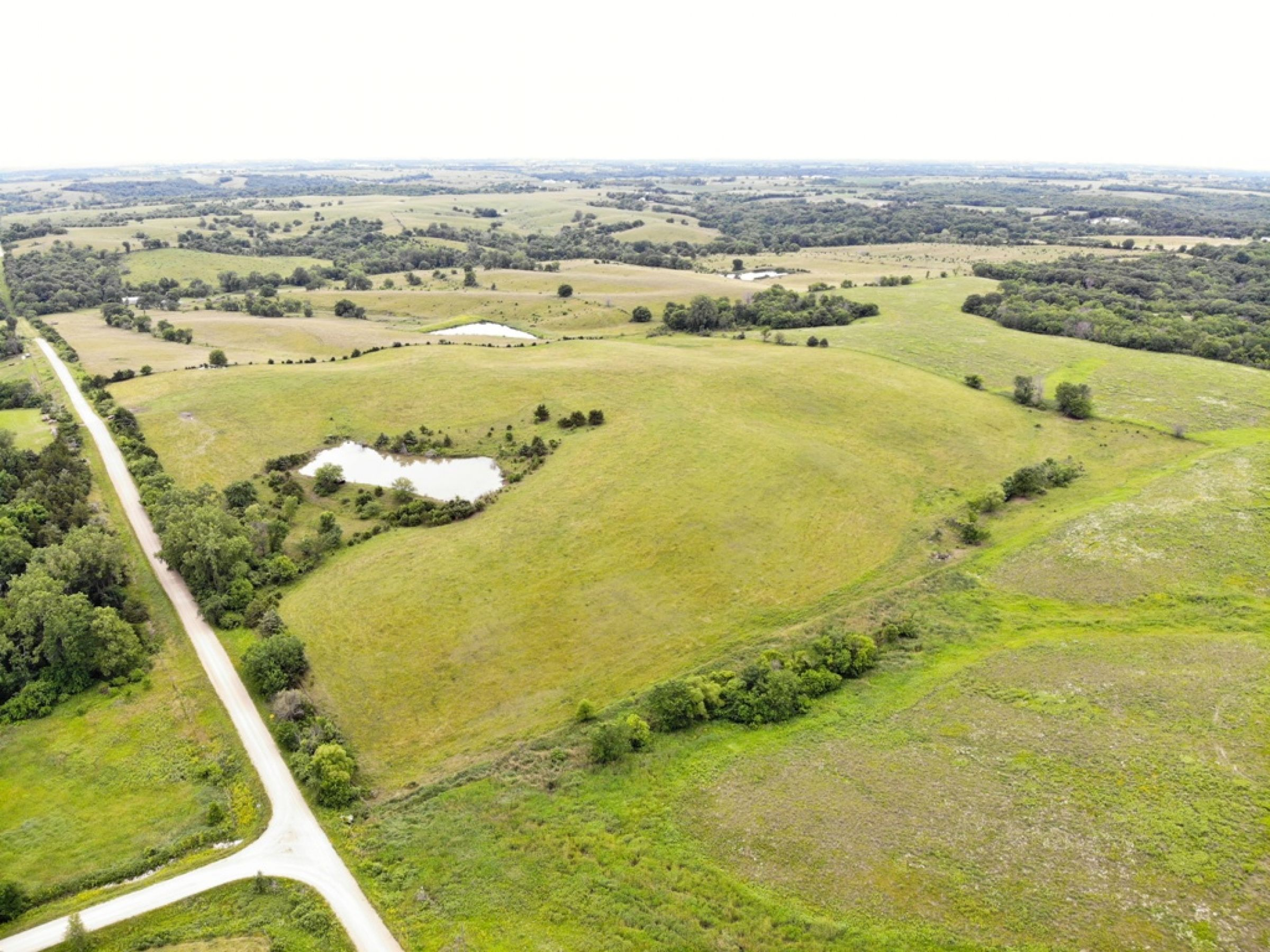 Peoples Company Land for Sale_Warren County, IA_14574-210th-avenue-lacona-50139
