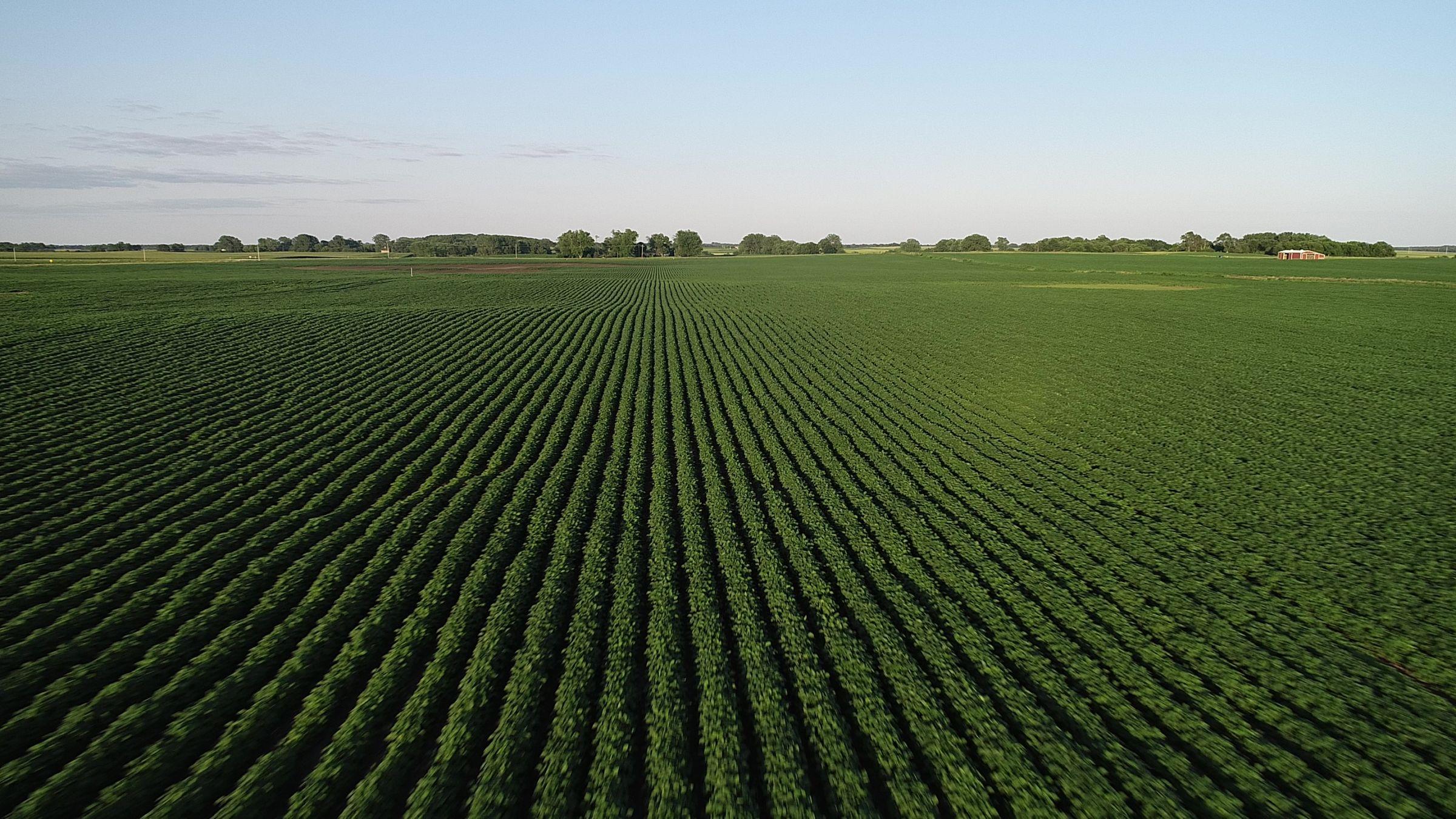 Tract 1 - Boone County Farmland