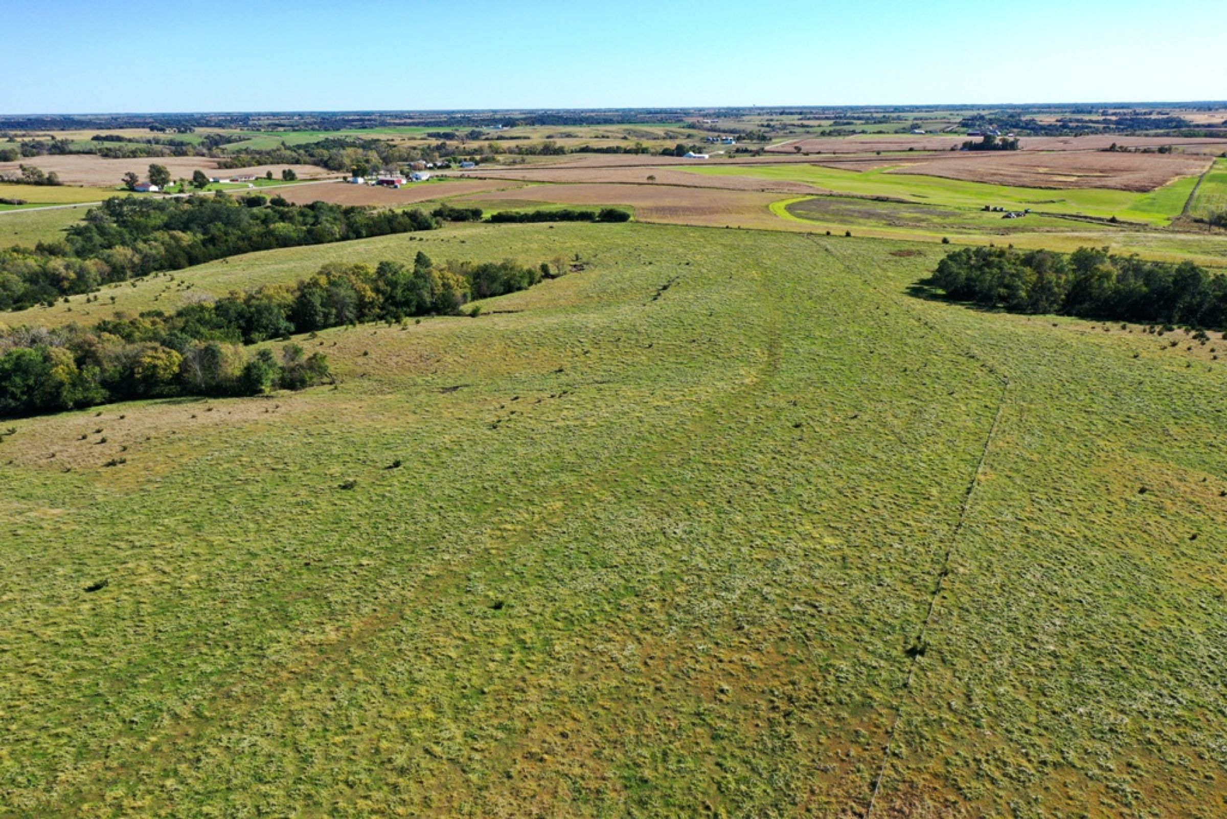 Peoples Company Land for Sale-Clarke County-000 Hwy. 69 Ave. Osceola, IA 50213