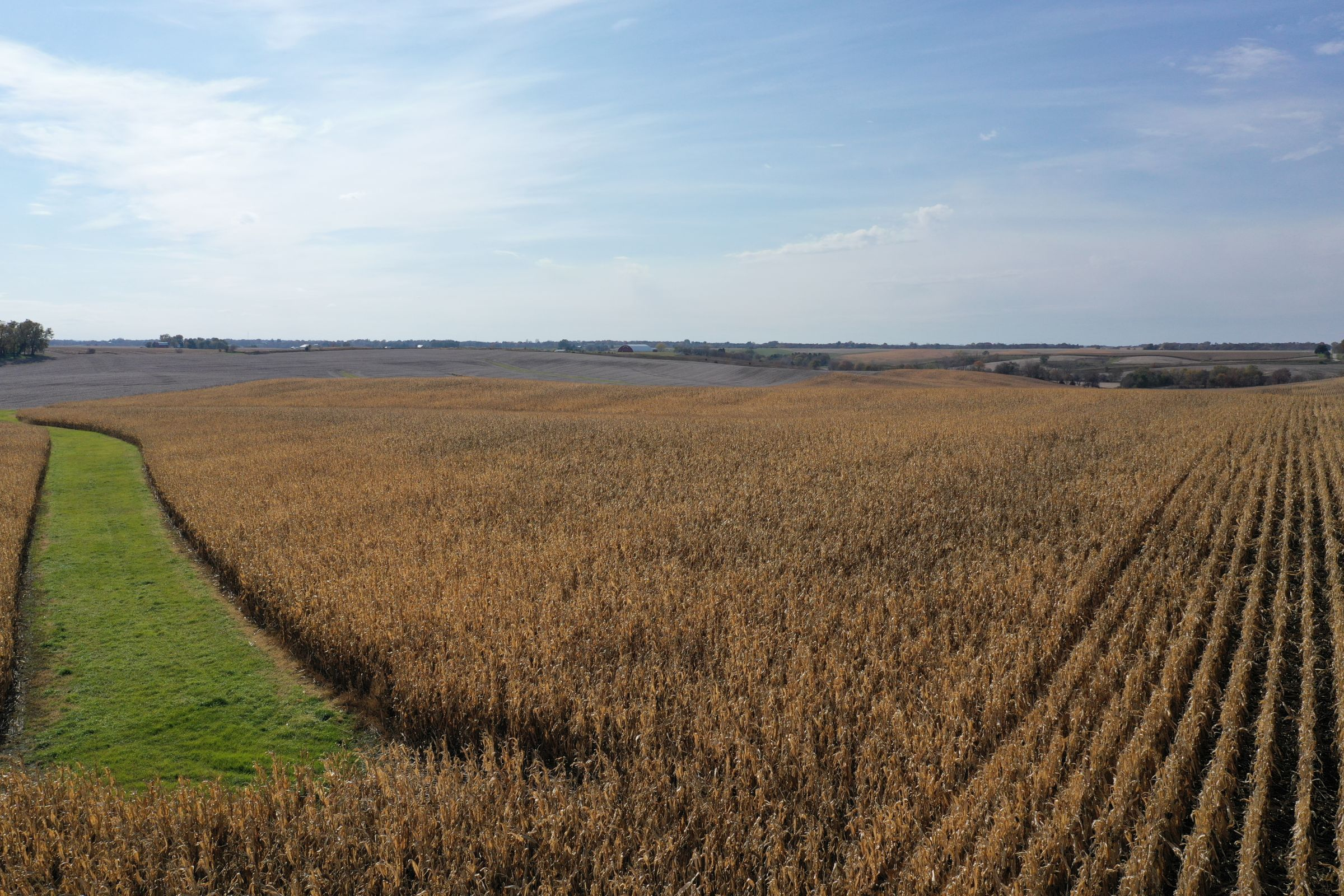 14747-iowa-highway-14-newton-50208-7-2019-10-28-212702.JPG