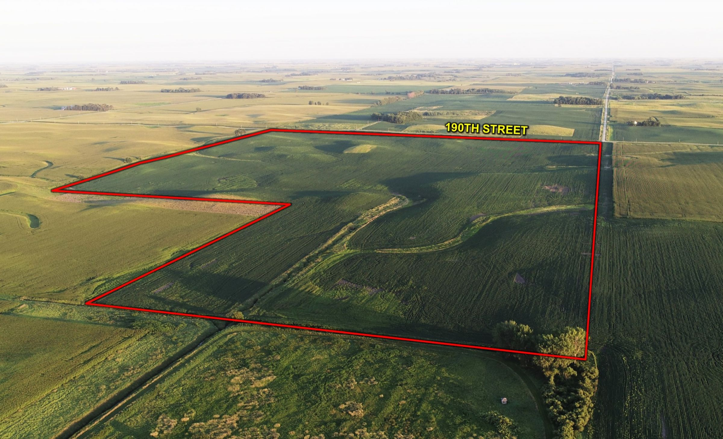 14763-cerro-gordo-farmland-for-sale-200-acres-ml-0-2019-11-07-180005.jpg