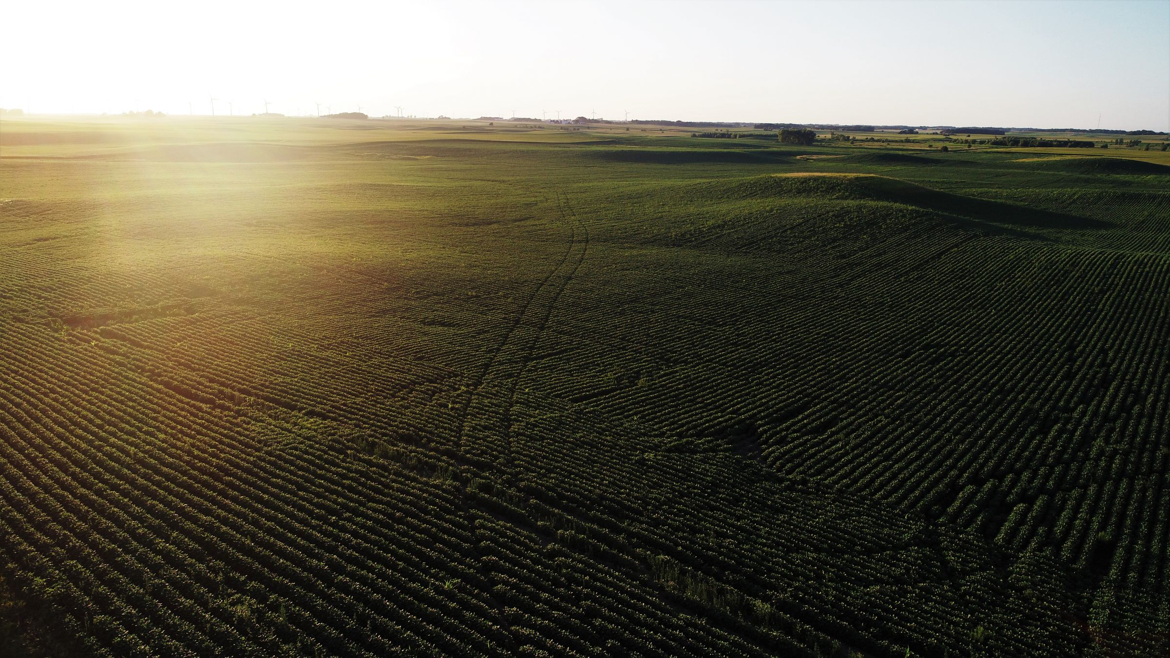14763-cerro-gordo-farmland-for-sale-200-acres-ml-0-2019-11-07-180507.jpg