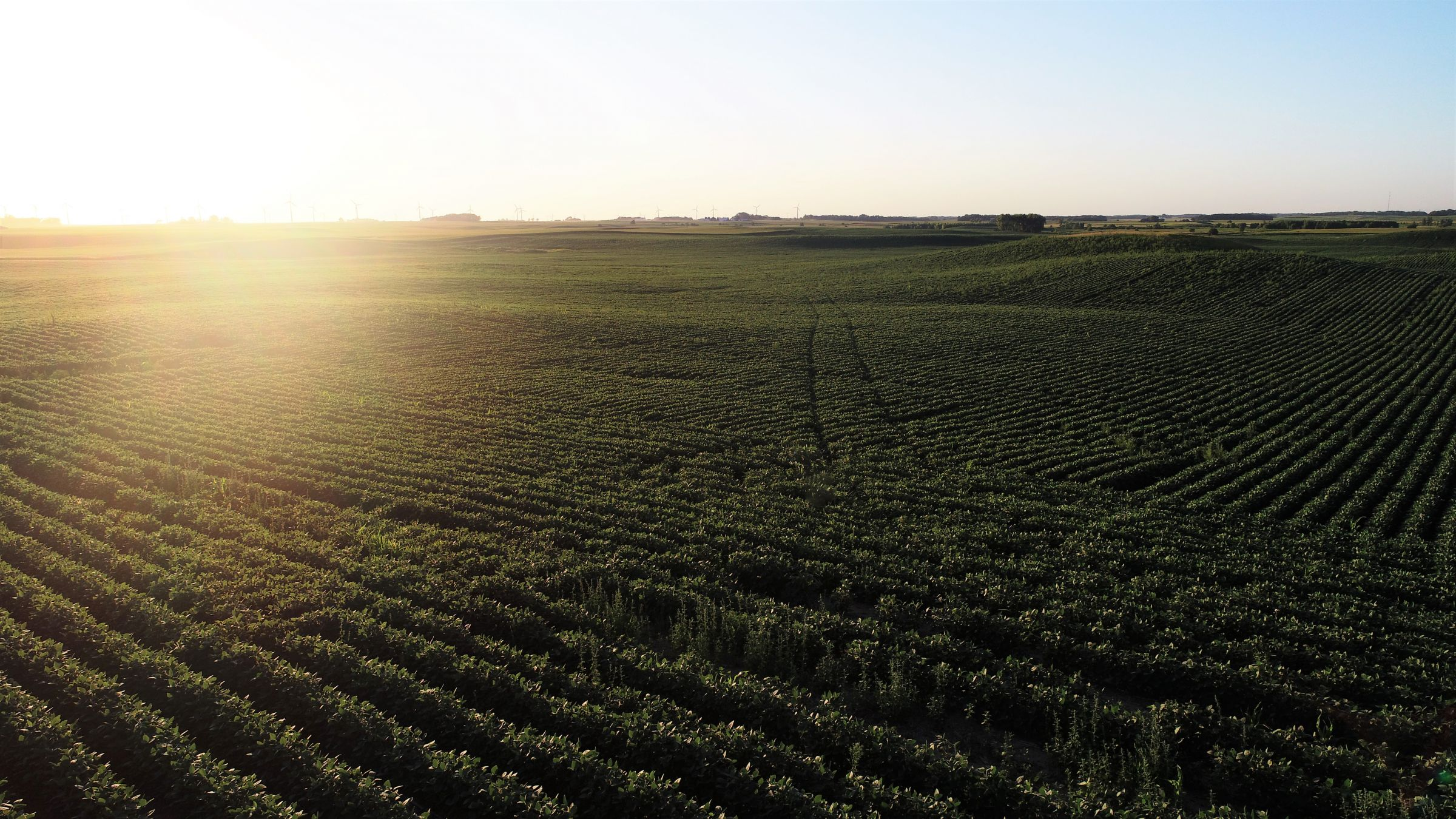 14763-cerro-gordo-farmland-for-sale-200-acres-ml-3-2019-11-07-180511.jpg