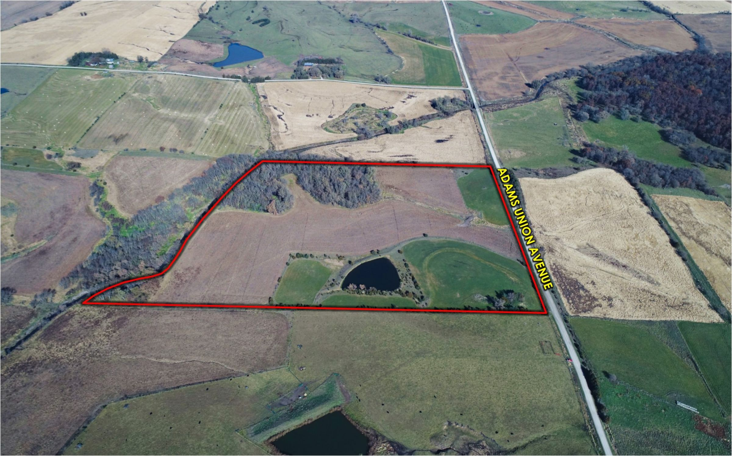 Peoples Company Land for Sale-14781-adams-union-avenue-kent-50851