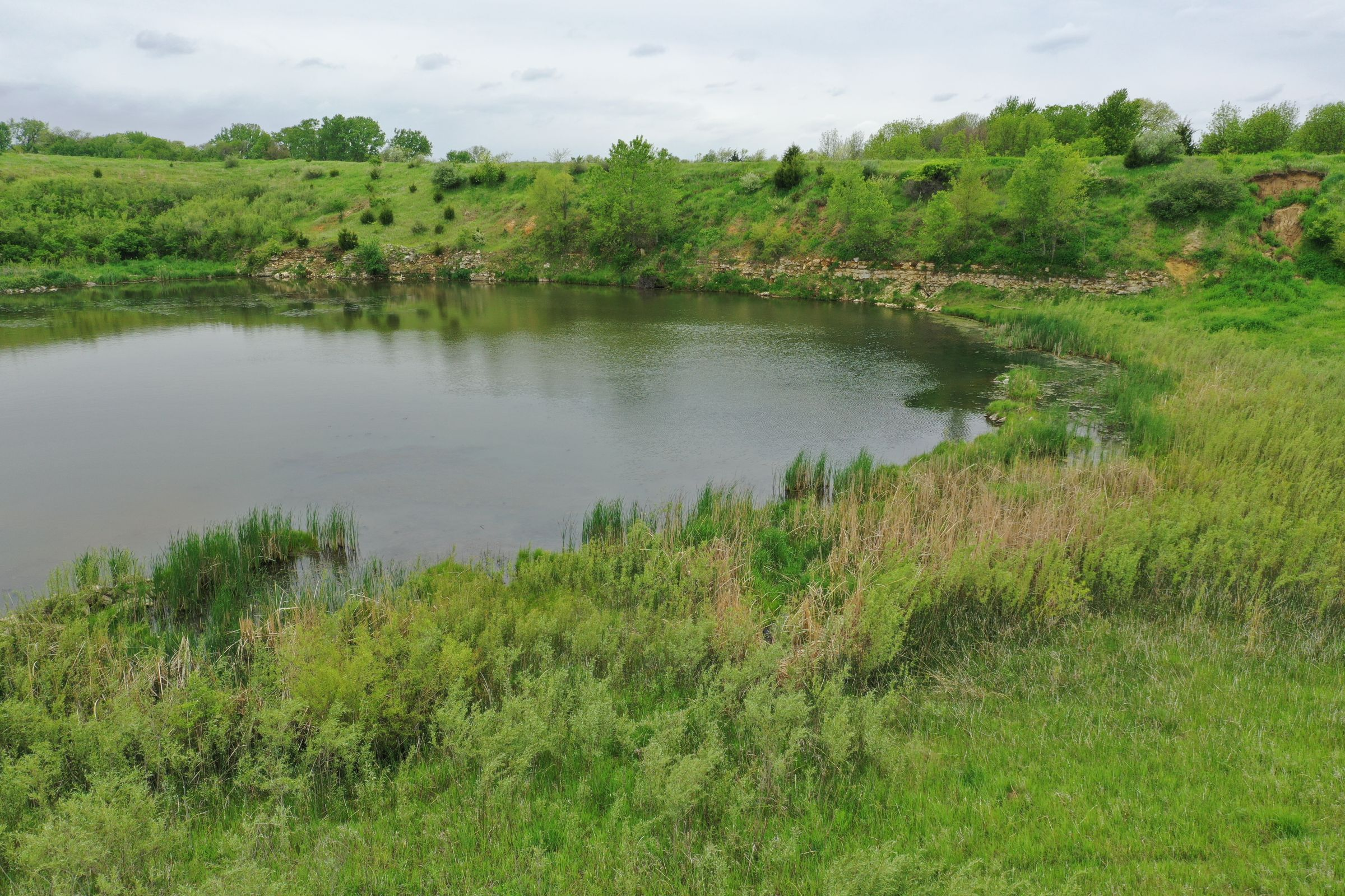 land-dallas-county-iowa-51-acres-listing-number-14894-0-2020-05-27-153314.JPG