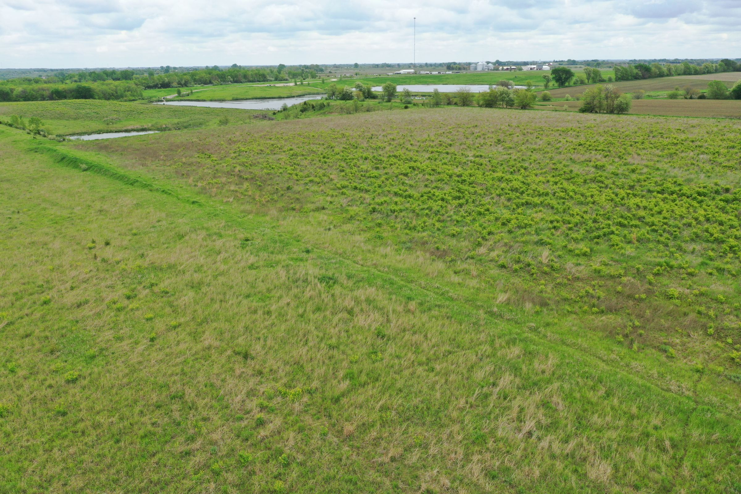 land-dallas-county-iowa-51-acres-listing-number-14894-1-2020-05-27-153220.JPG