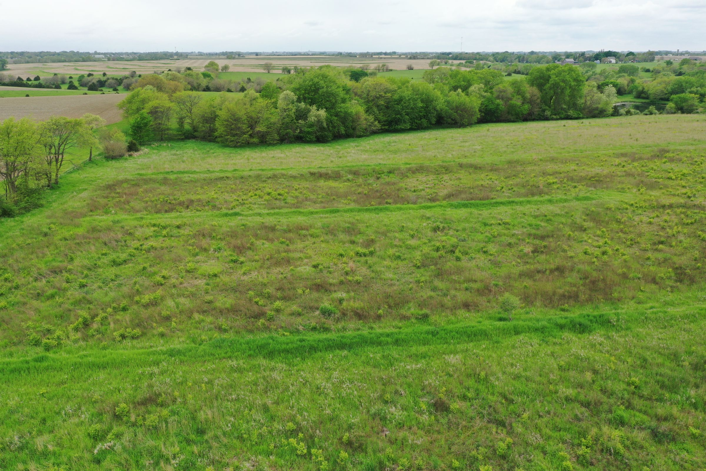 land-dallas-county-iowa-51-acres-listing-number-14894-1-2020-05-27-153504.JPG