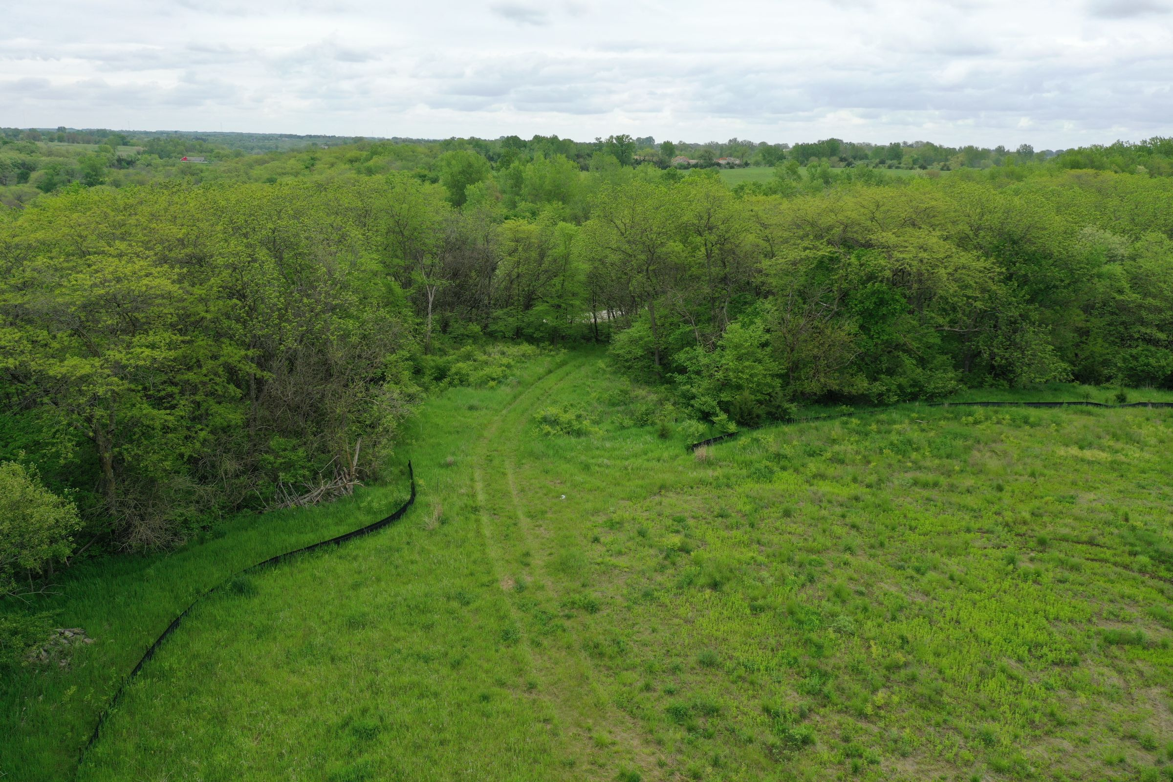 land-dallas-county-iowa-51-acres-listing-number-14894-3-2020-05-27-153223.JPG