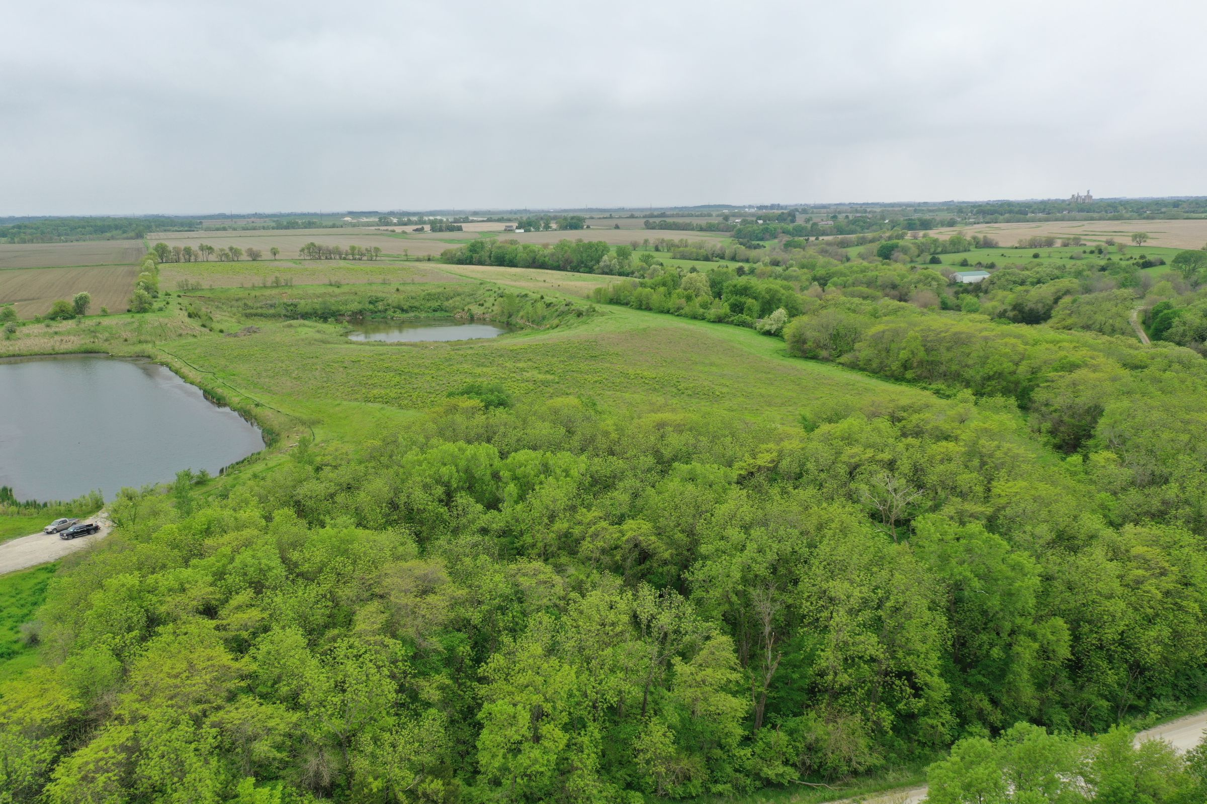 land-dallas-county-iowa-51-acres-listing-number-14894-4-2020-05-27-153511.JPG
