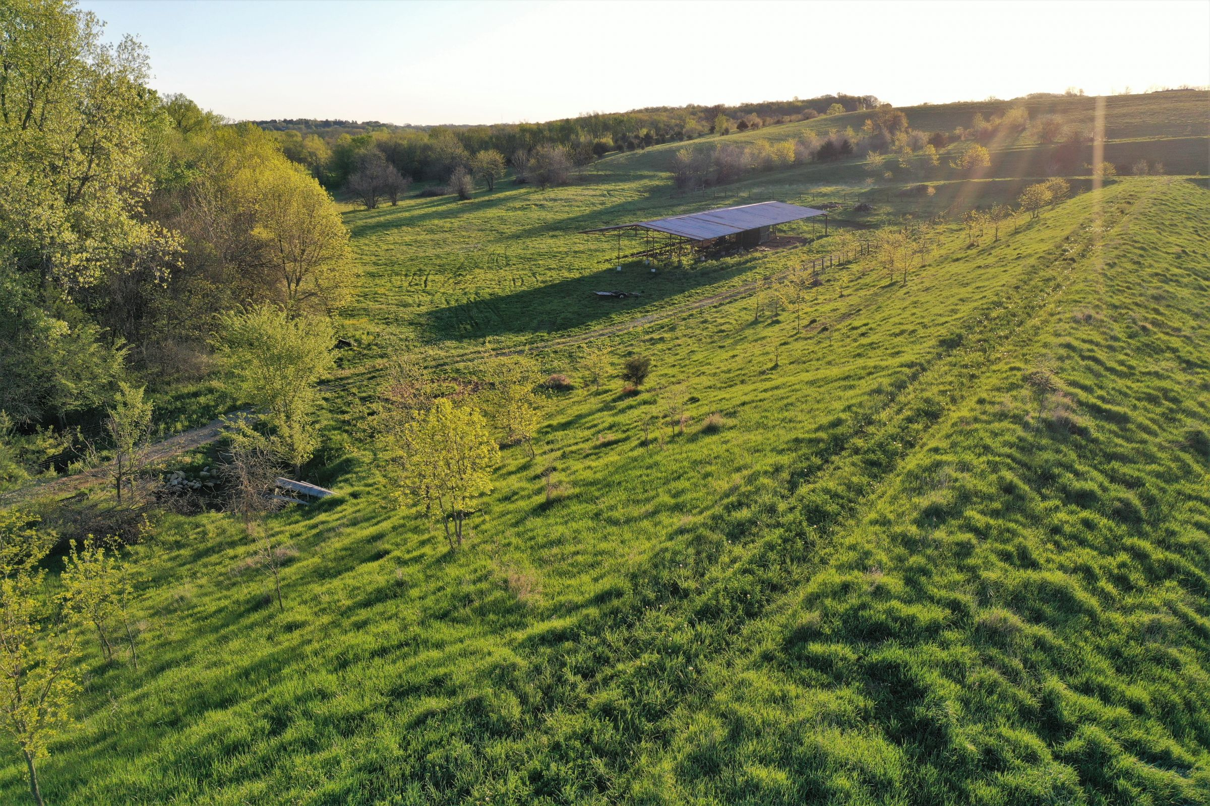 land-madison-county-iowa-71-acres-listing-number-14917-0-2020-06-01-192207.jpg