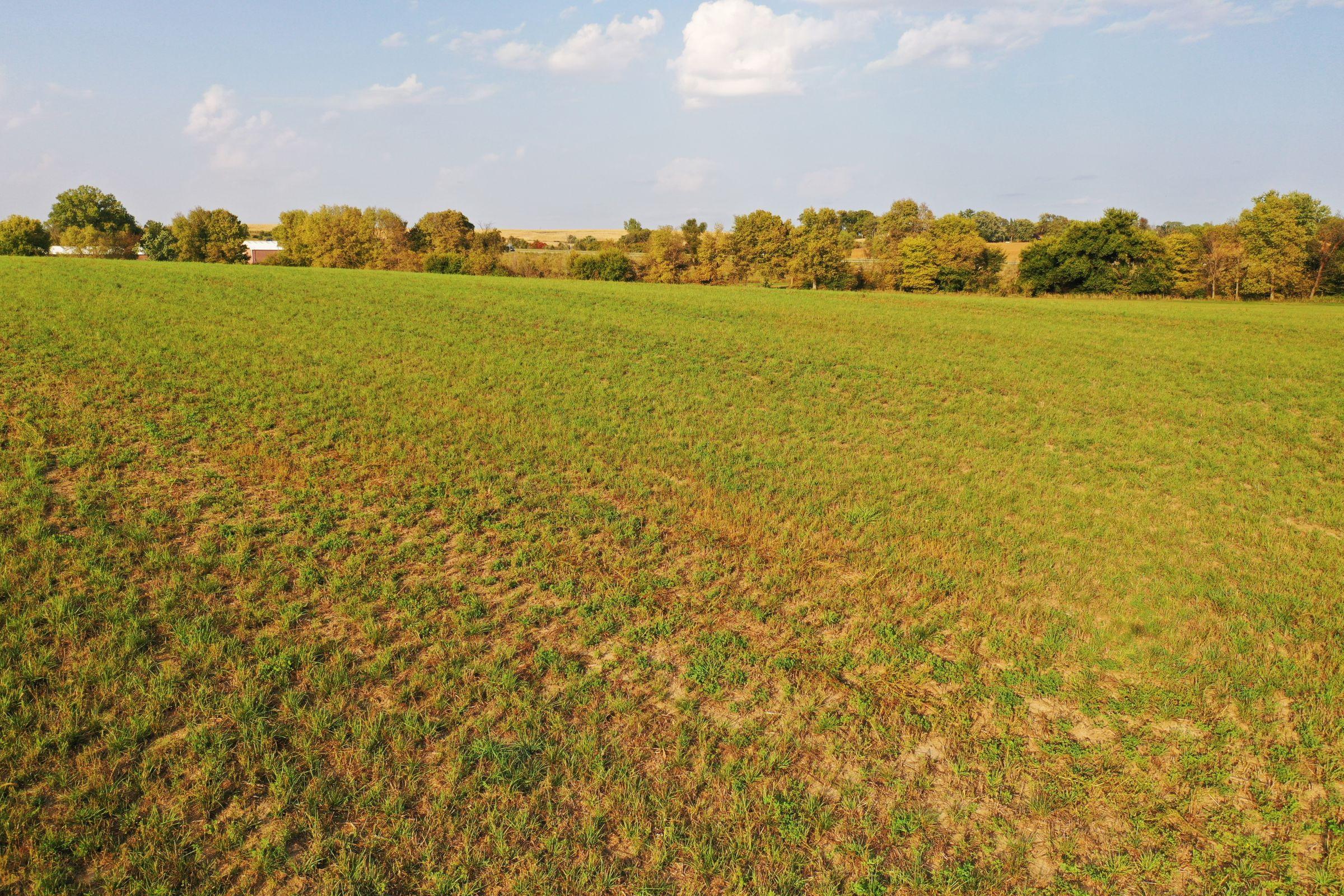 land-warren-county-iowa-29-acres-listing-number-14919-2-2020-10-12-170351.jpg
