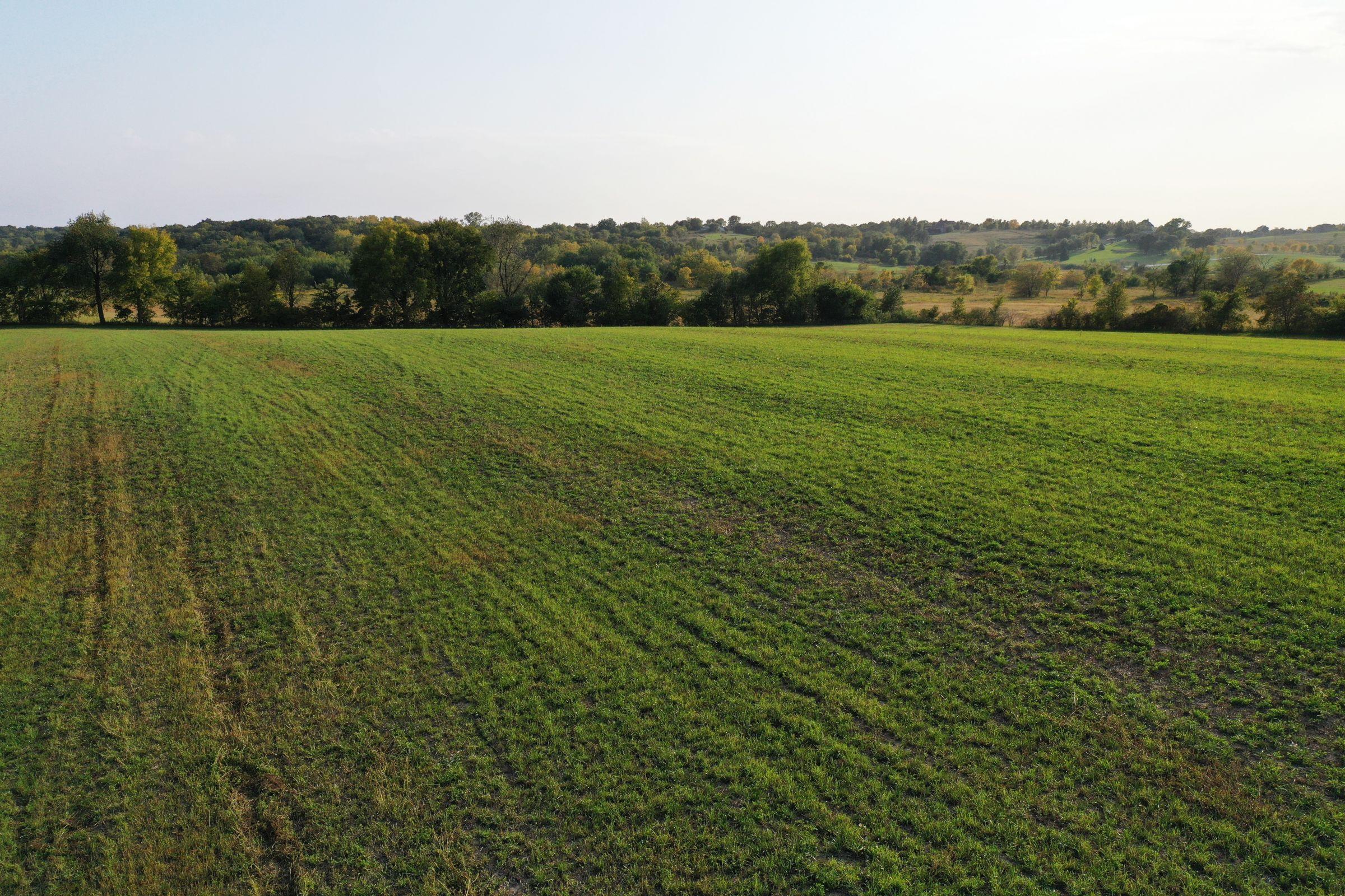 land-warren-county-iowa-29-acres-listing-number-14919-5-2020-10-12-170356.jpg