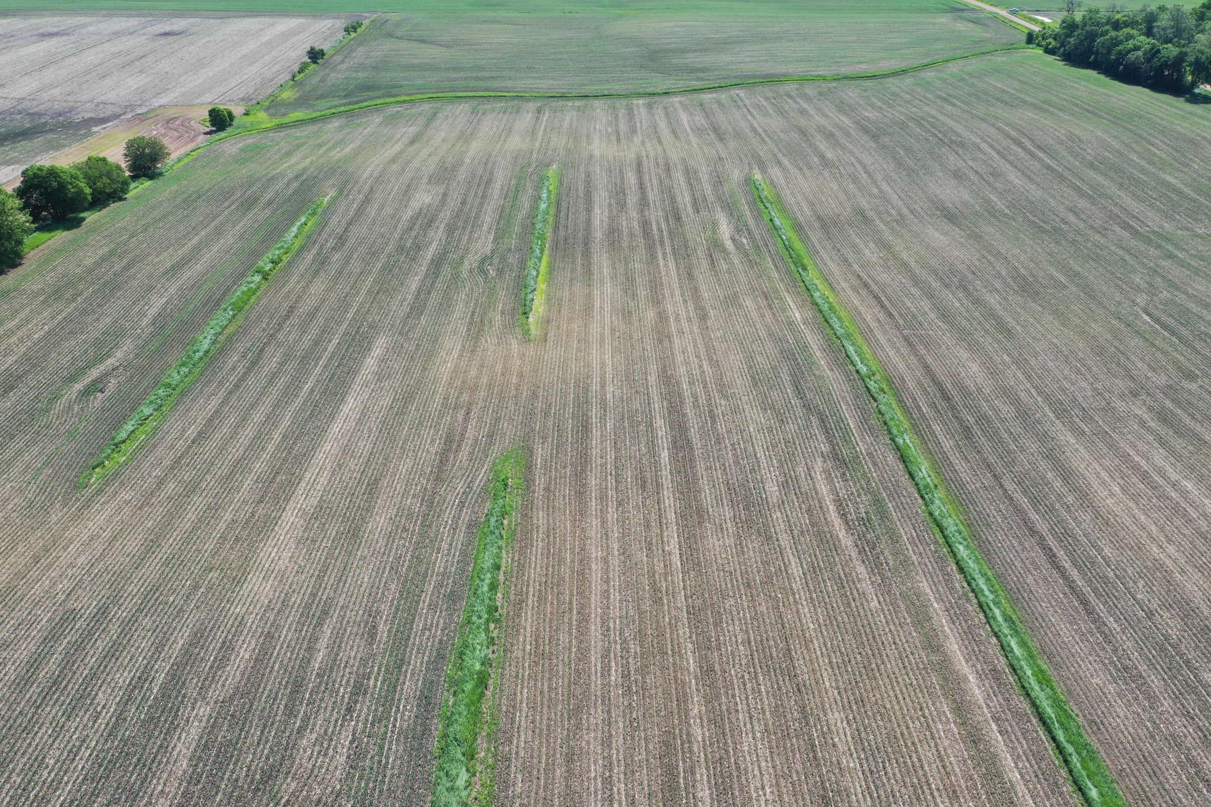 Boone County Iowa Farm Land For Sale