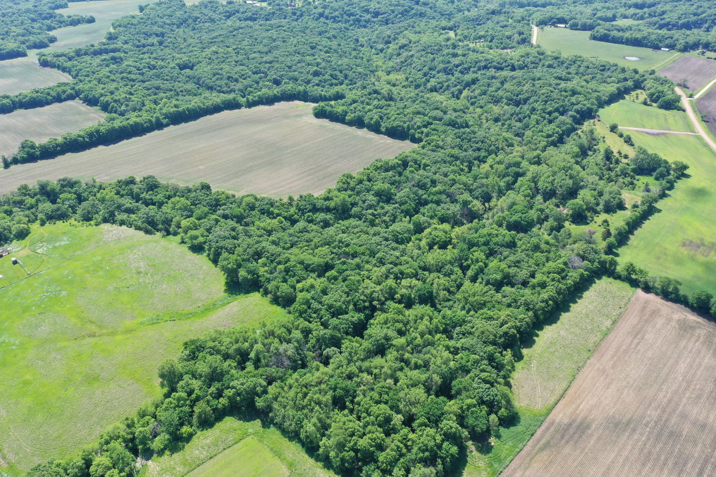 Boone County Iowa Farm For Sale