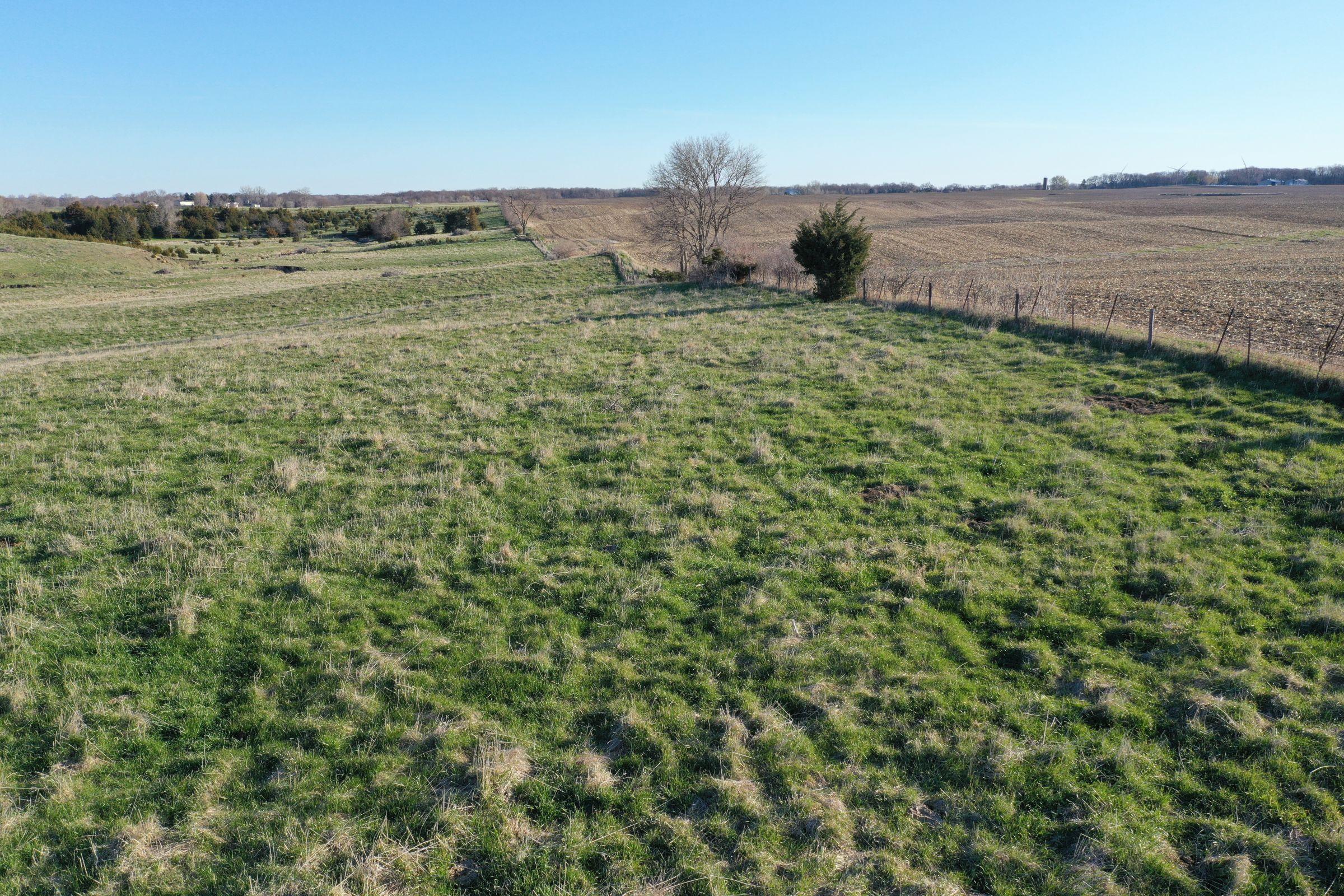 Dallas County Farmland and Pasture For Sale, Iowa