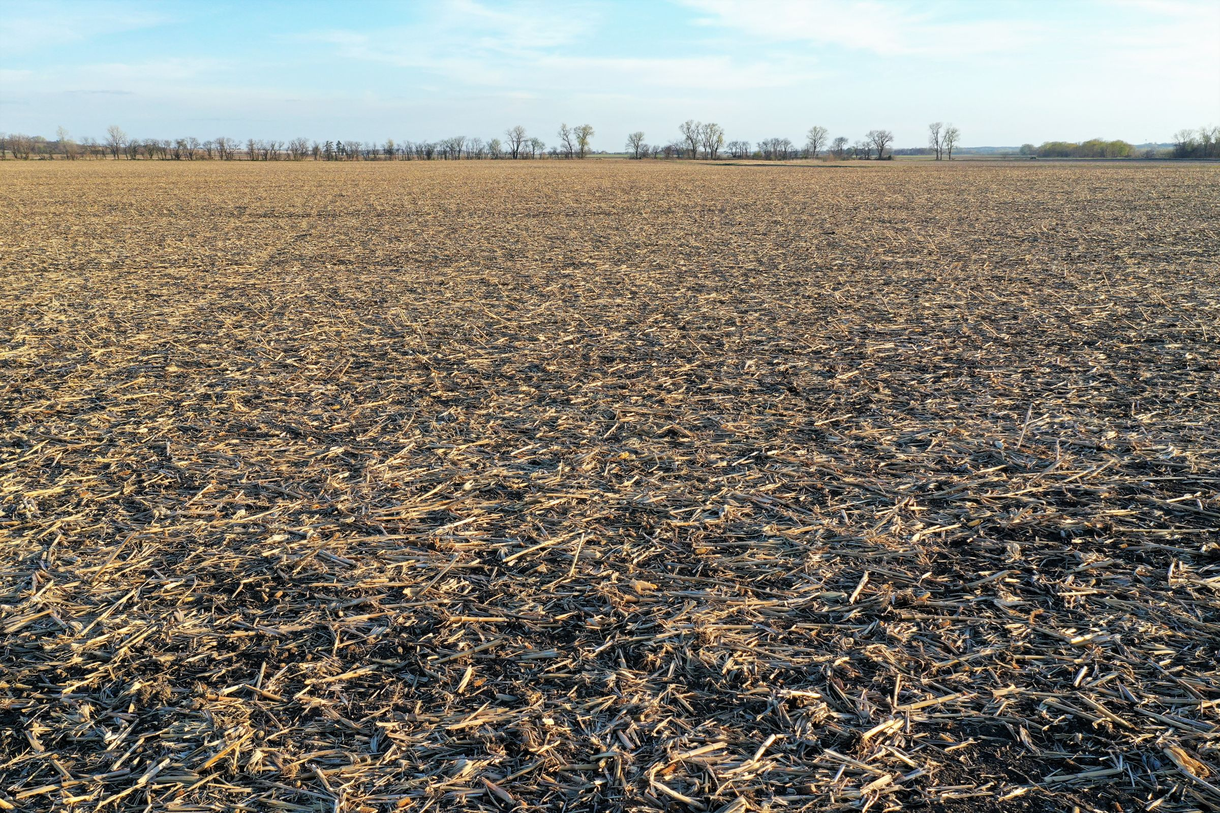 land-page-county-iowa-160-acres-listing-number-14979-0-2020-04-28-163045.jpg