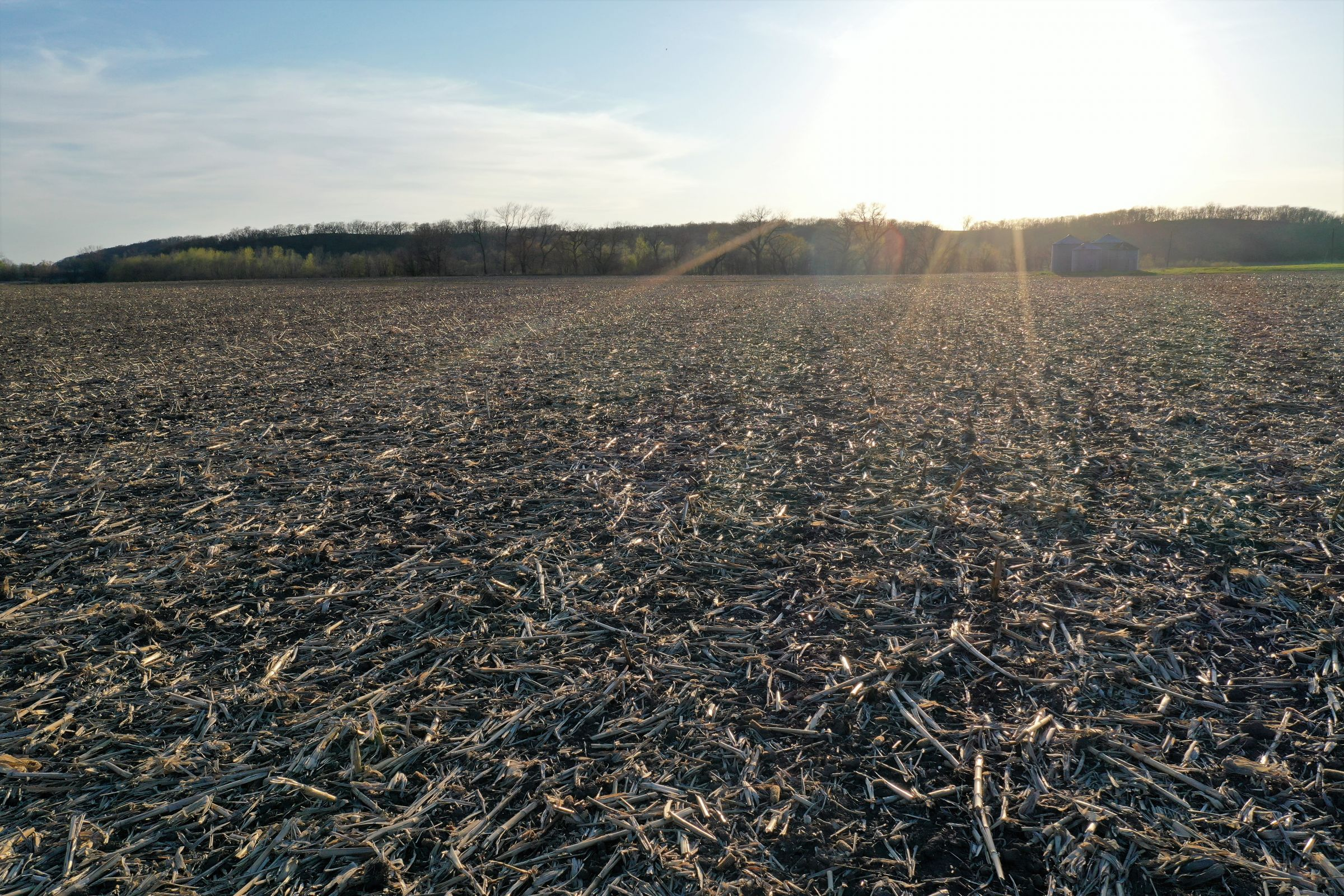 land-page-county-iowa-160-acres-listing-number-14979-5-2020-04-28-162954.jpg