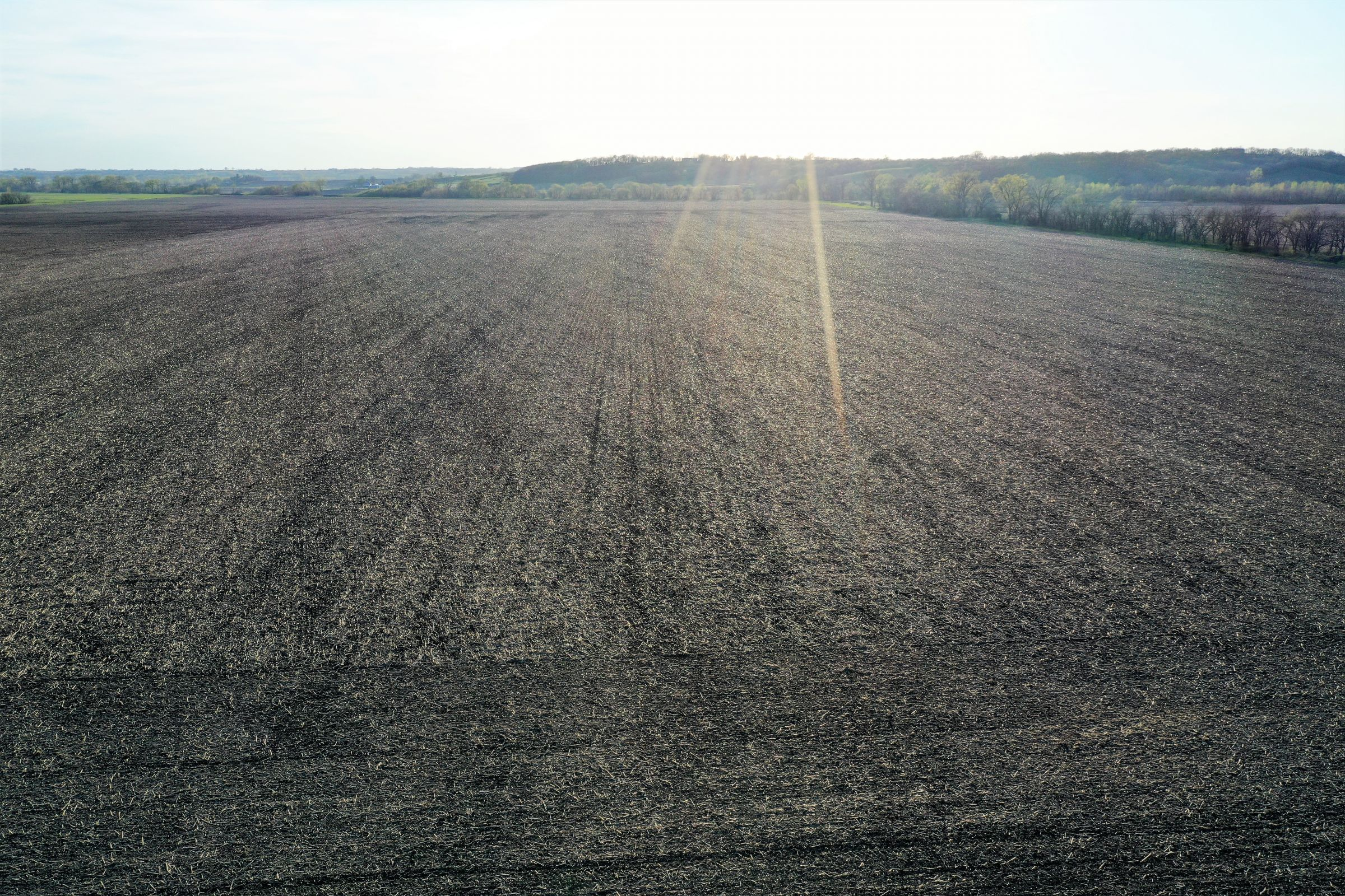 land-page-county-iowa-160-acres-listing-number-14980-4-2020-04-28-172840.jpg