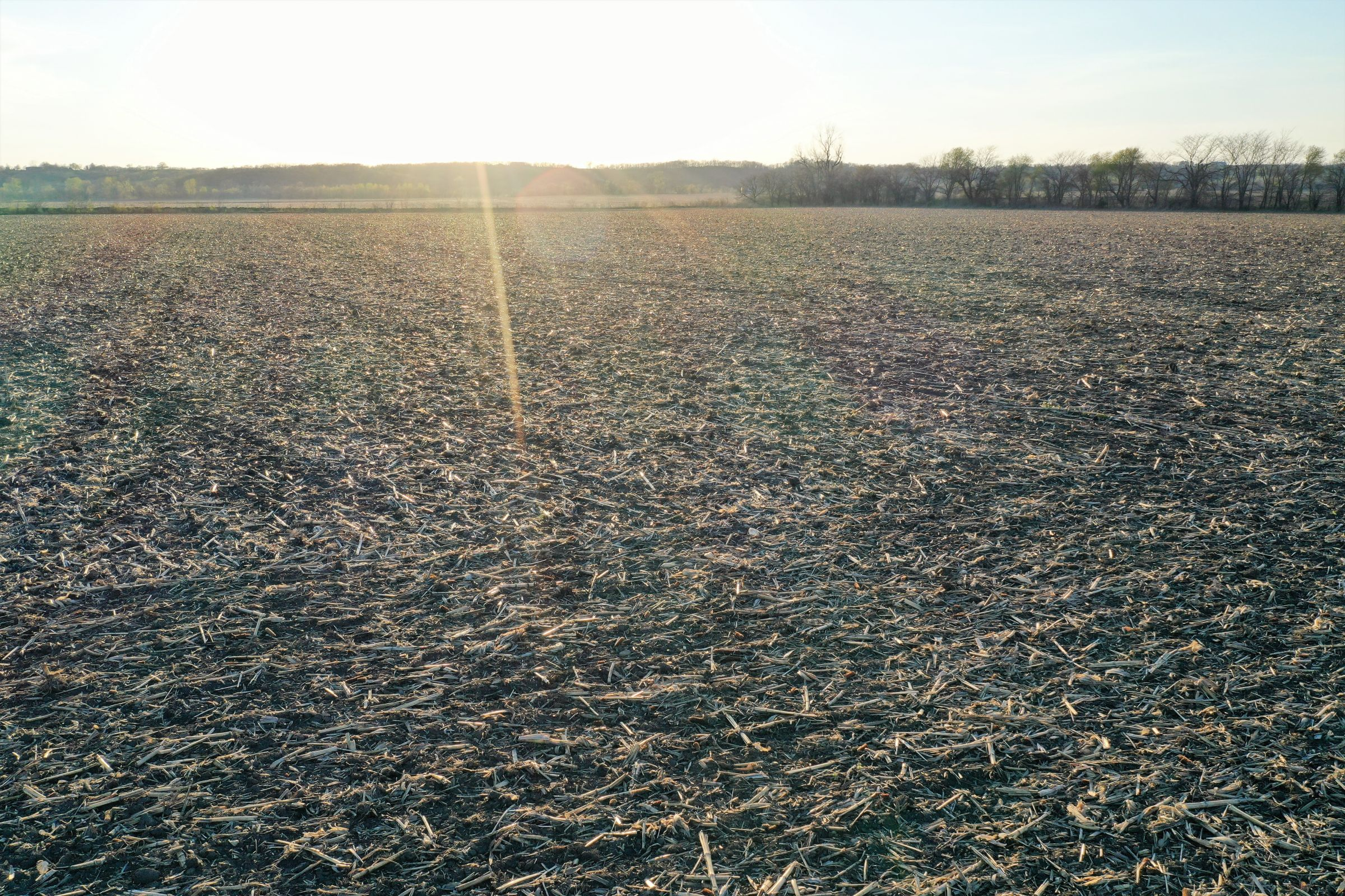 land-page-county-iowa-40-acres-listing-number-14981-5-2020-04-28-184124.jpg