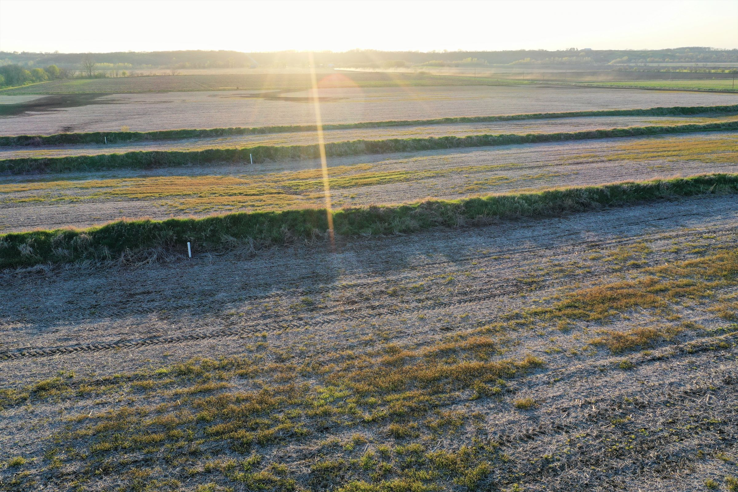 land-page-county-iowa-120-acres-listing-number-14982-4-2020-04-28-192953.jpg