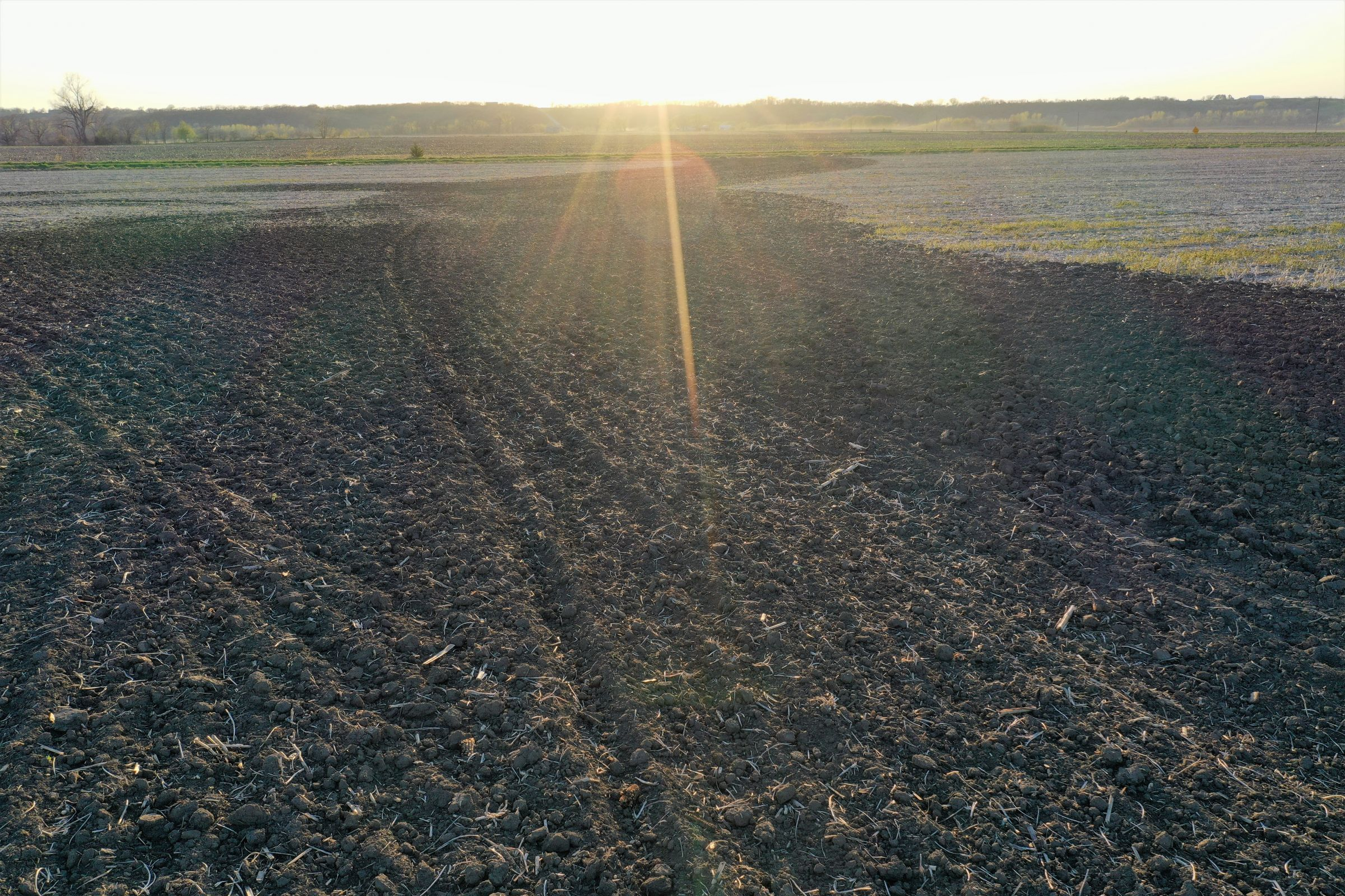 land-page-county-iowa-120-acres-listing-number-14982-5-2020-04-28-192955.jpg