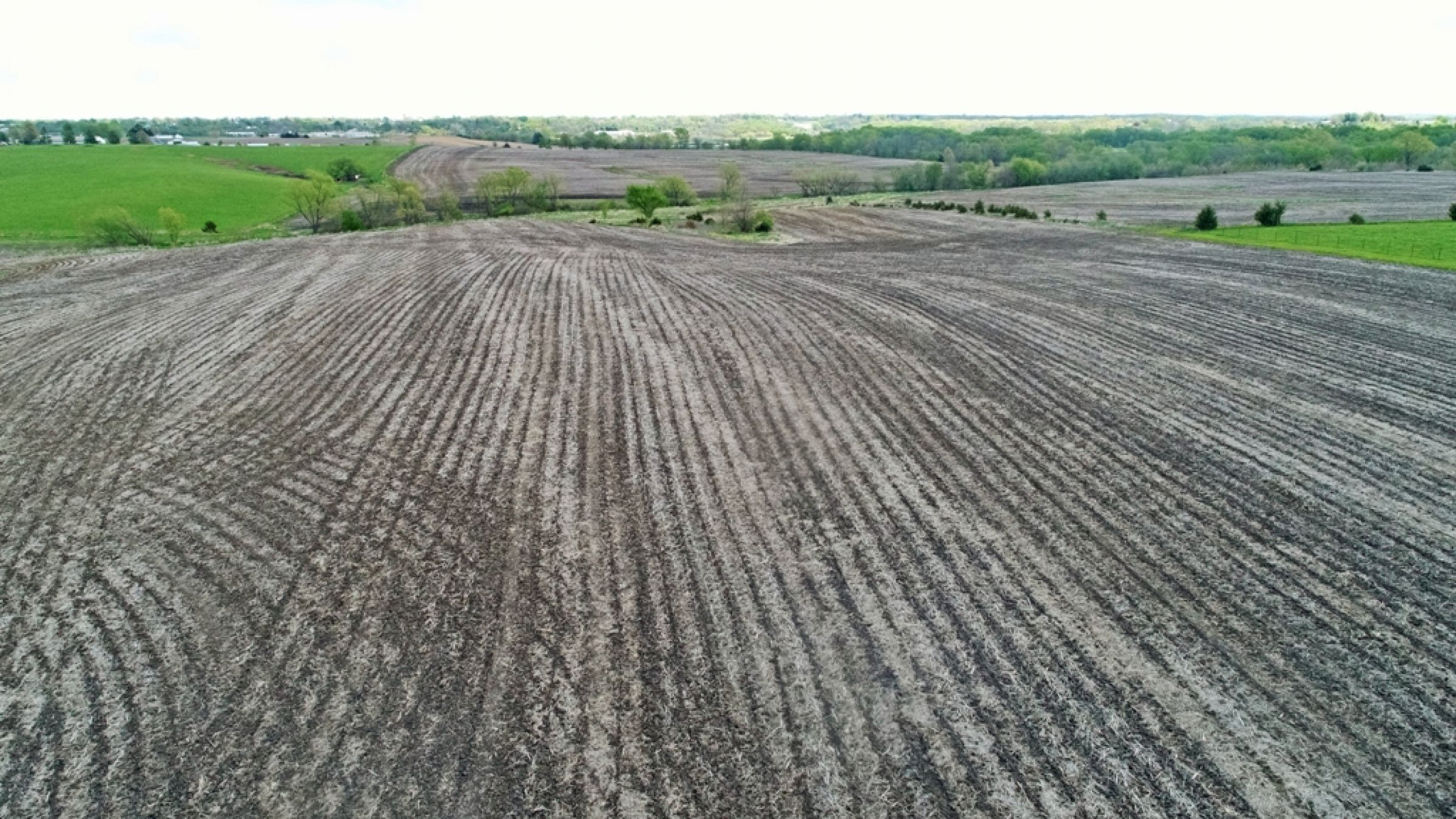 land-lucas-county-iowa-88-acres-listing-number-14991-3-2020-05-06-184045.JPG