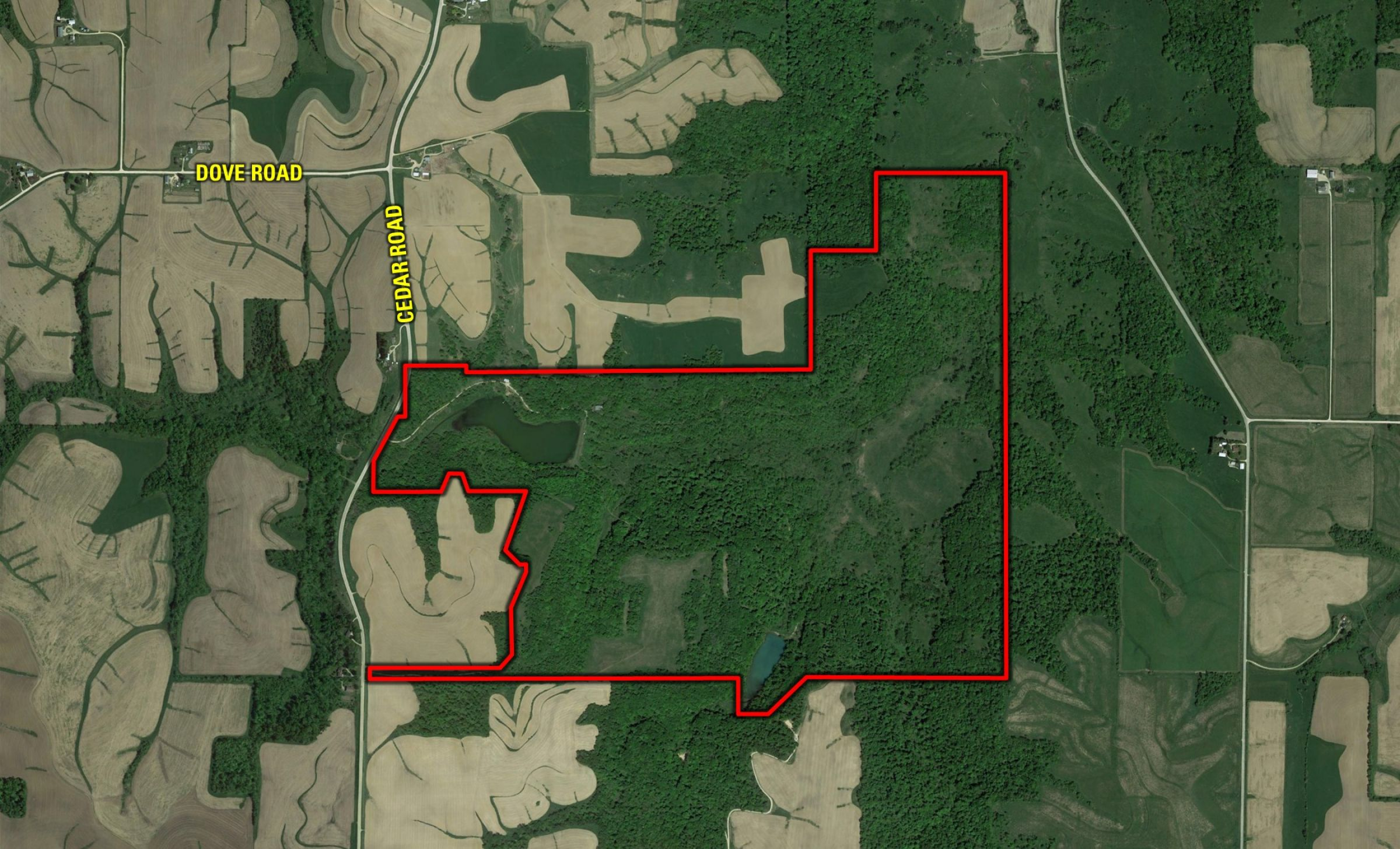 land-fayette-county-iowa-495-acres-listing-number-14992-0-2020-06-12-005438.jpg