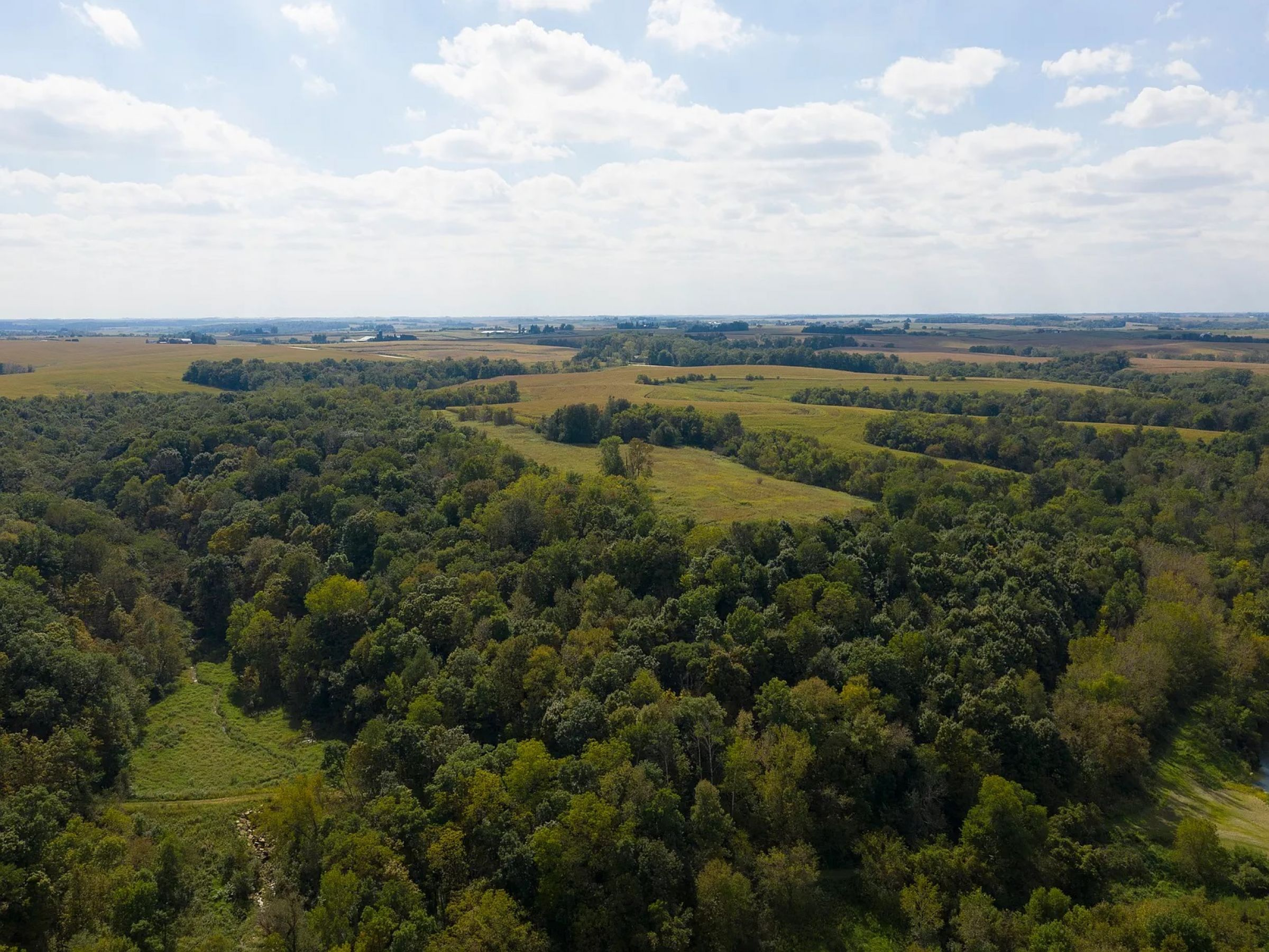 land-fayette-county-iowa-495-acres-listing-number-14992-10-2020-05-08-210244.jpg