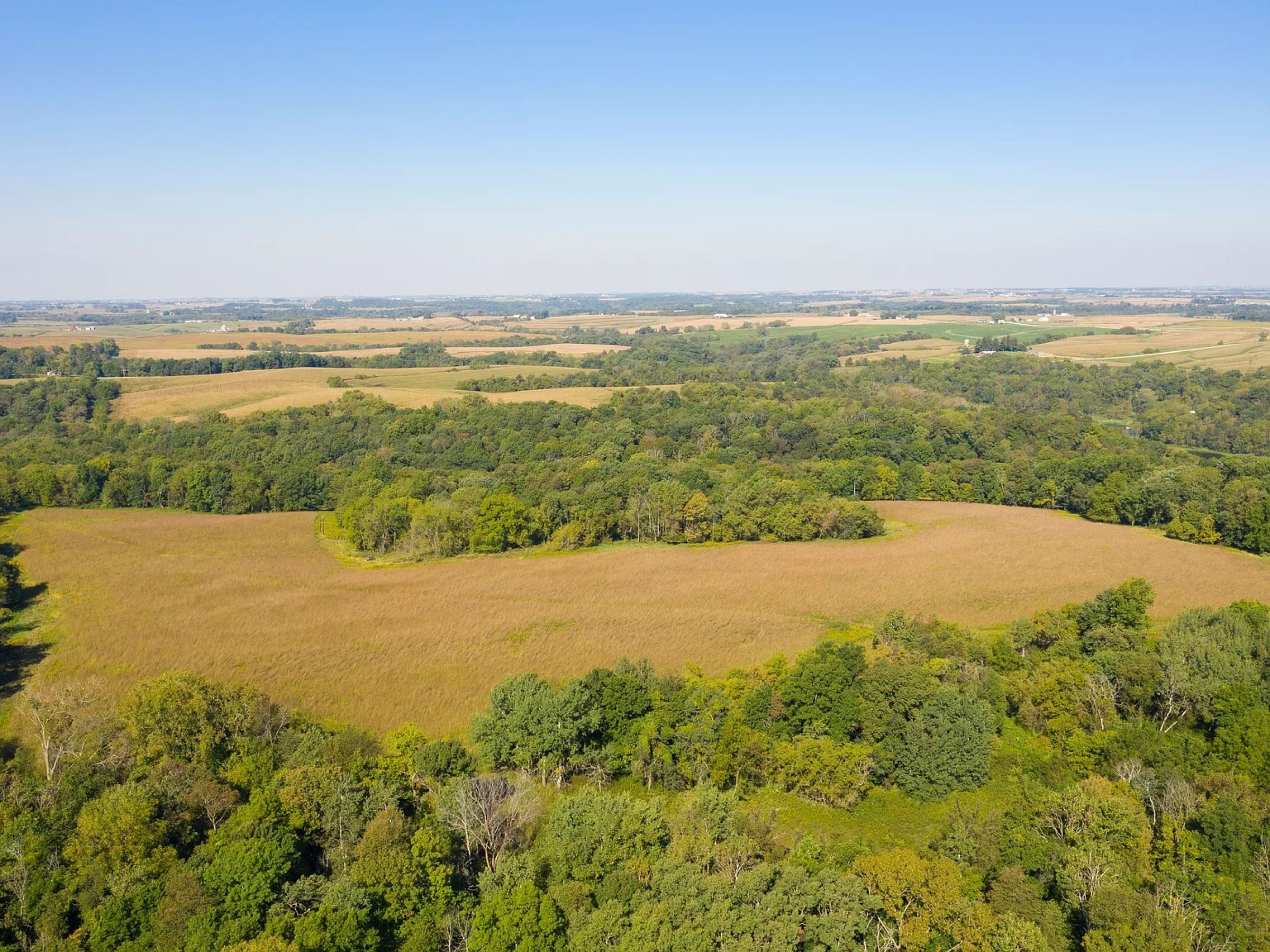 land-fayette-county-iowa-495-acres-listing-number-14992-12-2020-05-08-210245.jpg