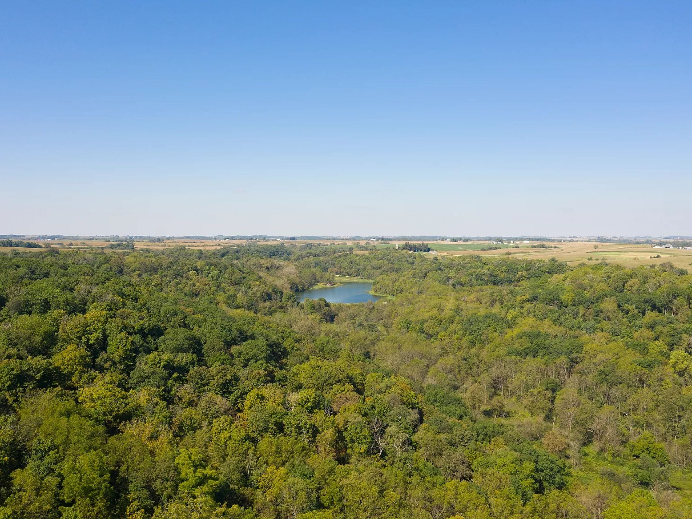 land-fayette-county-iowa-495-acres-listing-number-14992-6-2020-05-08-210242.jpg