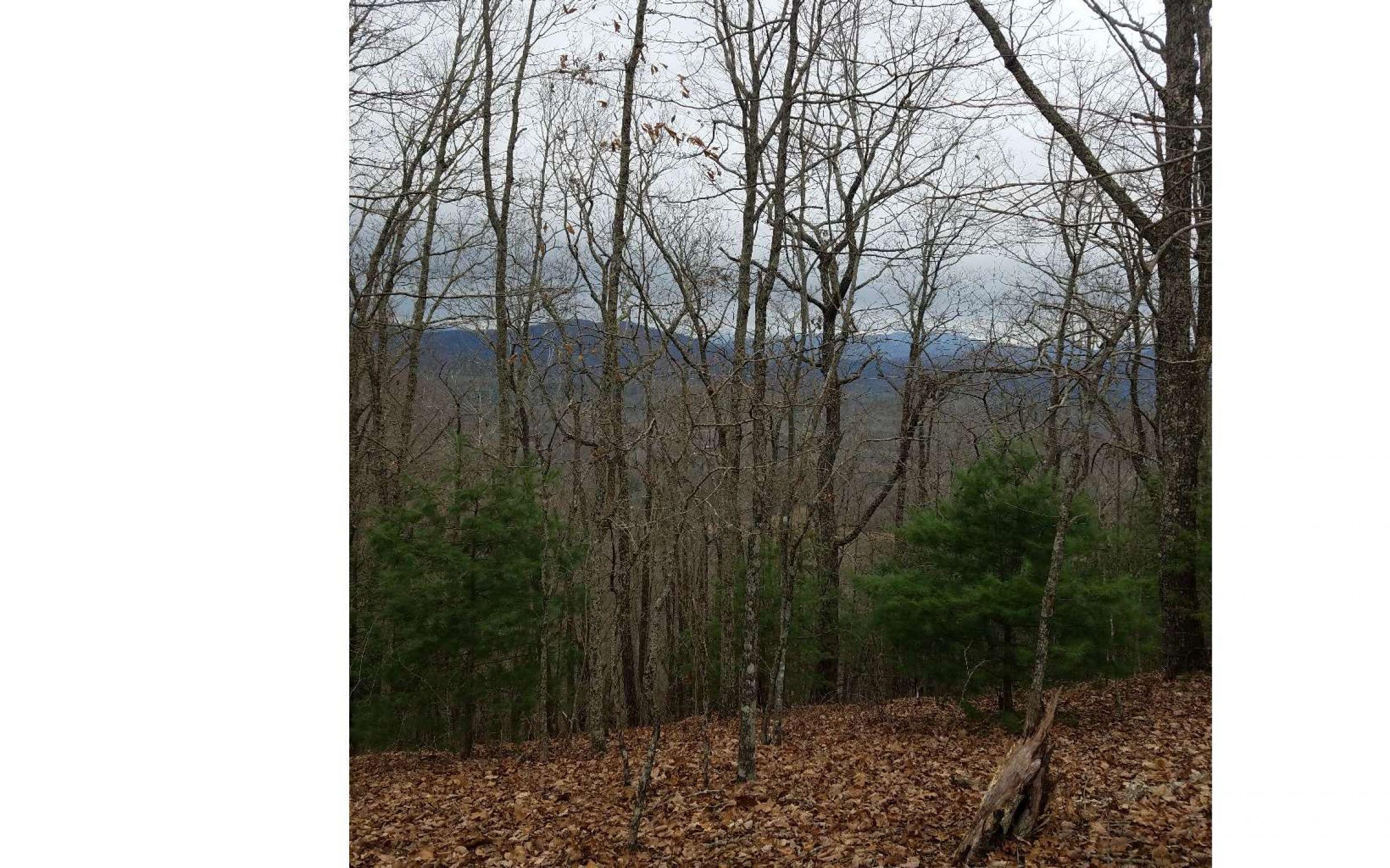 land-sharp-county-arkansas-80-acres-listing-number-15013-0-2020-06-10-155709.jpg