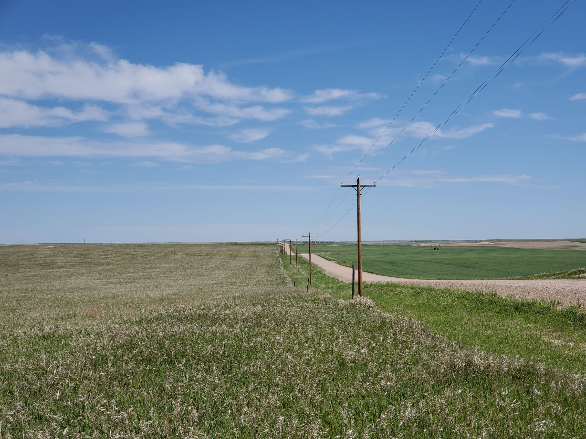 land-kimball-county-nebraska-642-acres-listing-number-15019-1-2020-06-05-171354.jpg