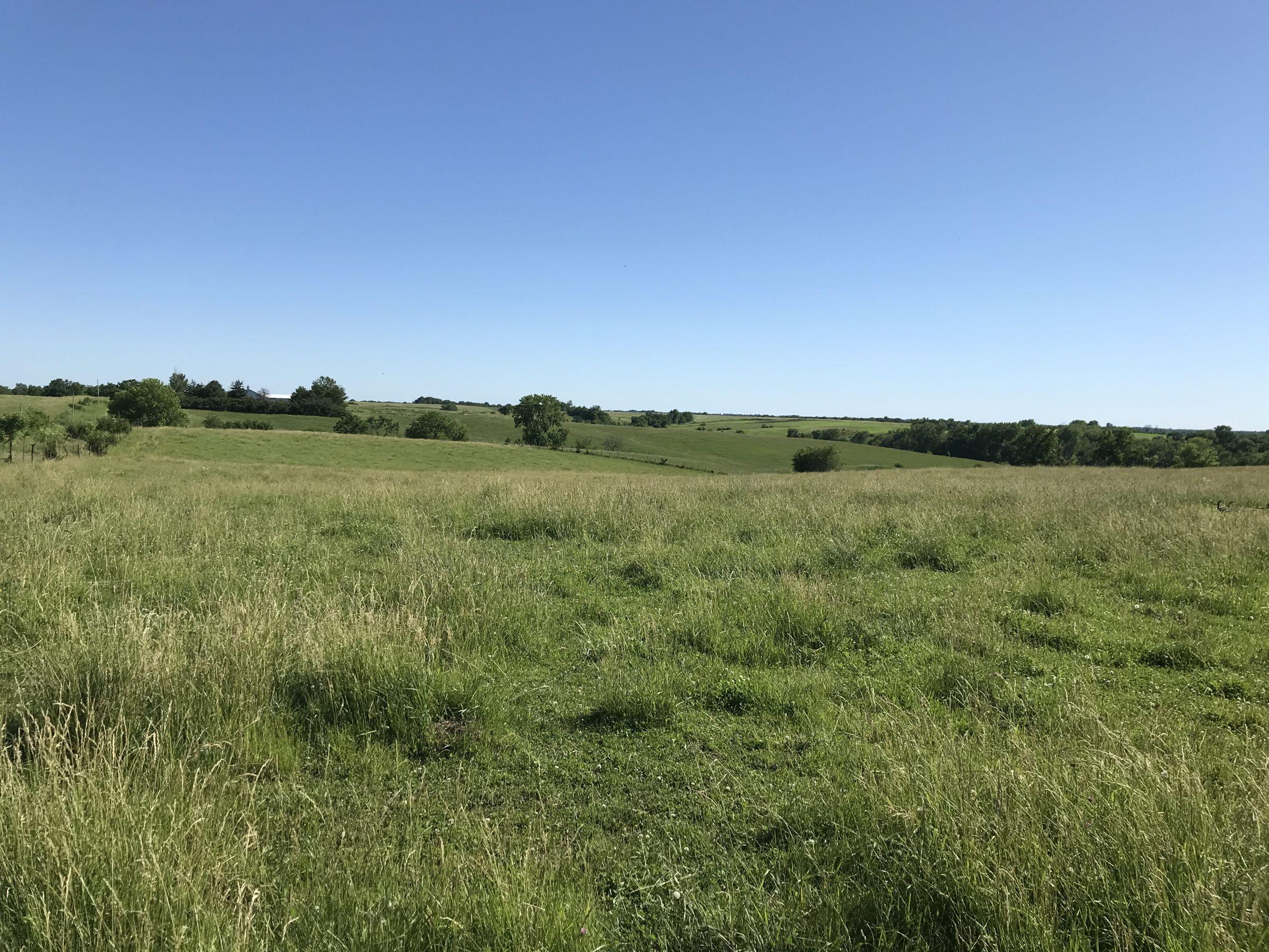 land-warren-county-iowa-20-acres-listing-number-15031-1-2020-06-14-152200.JPG