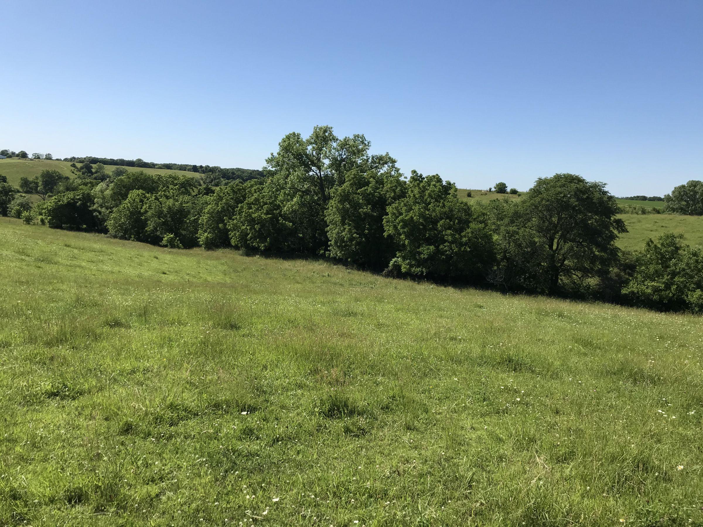 land-warren-county-iowa-20-acres-listing-number-15031-2-2020-06-14-152201.JPG