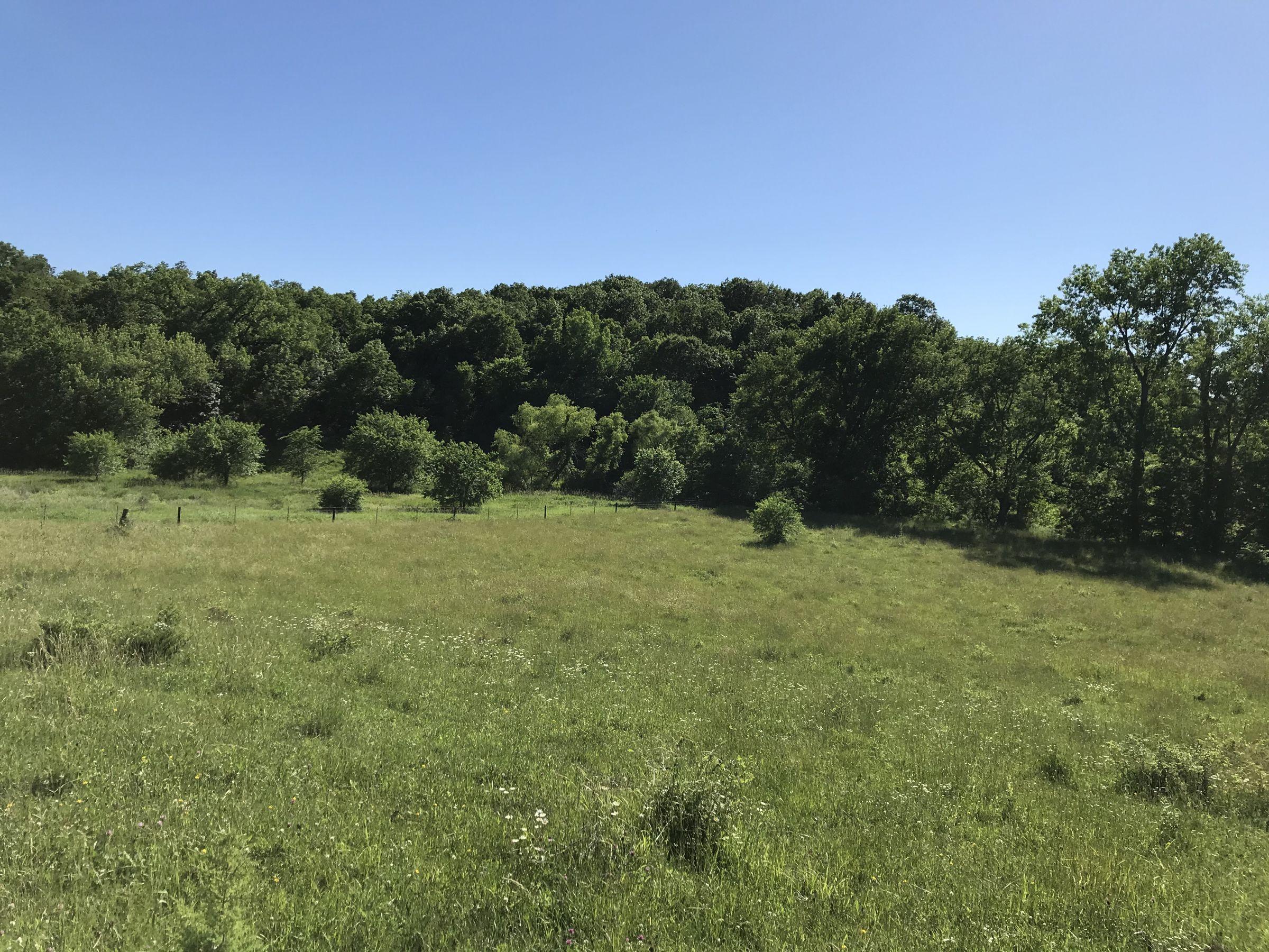 land-warren-county-iowa-60-acres-listing-number-15033-0-2020-06-14-151751.JPG
