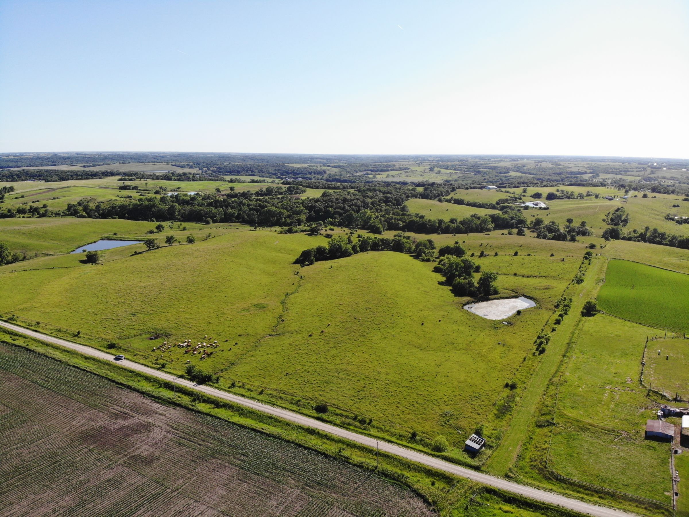 land-warren-county-iowa-60-acres-listing-number-15033-1-2020-06-15-160702.jpg