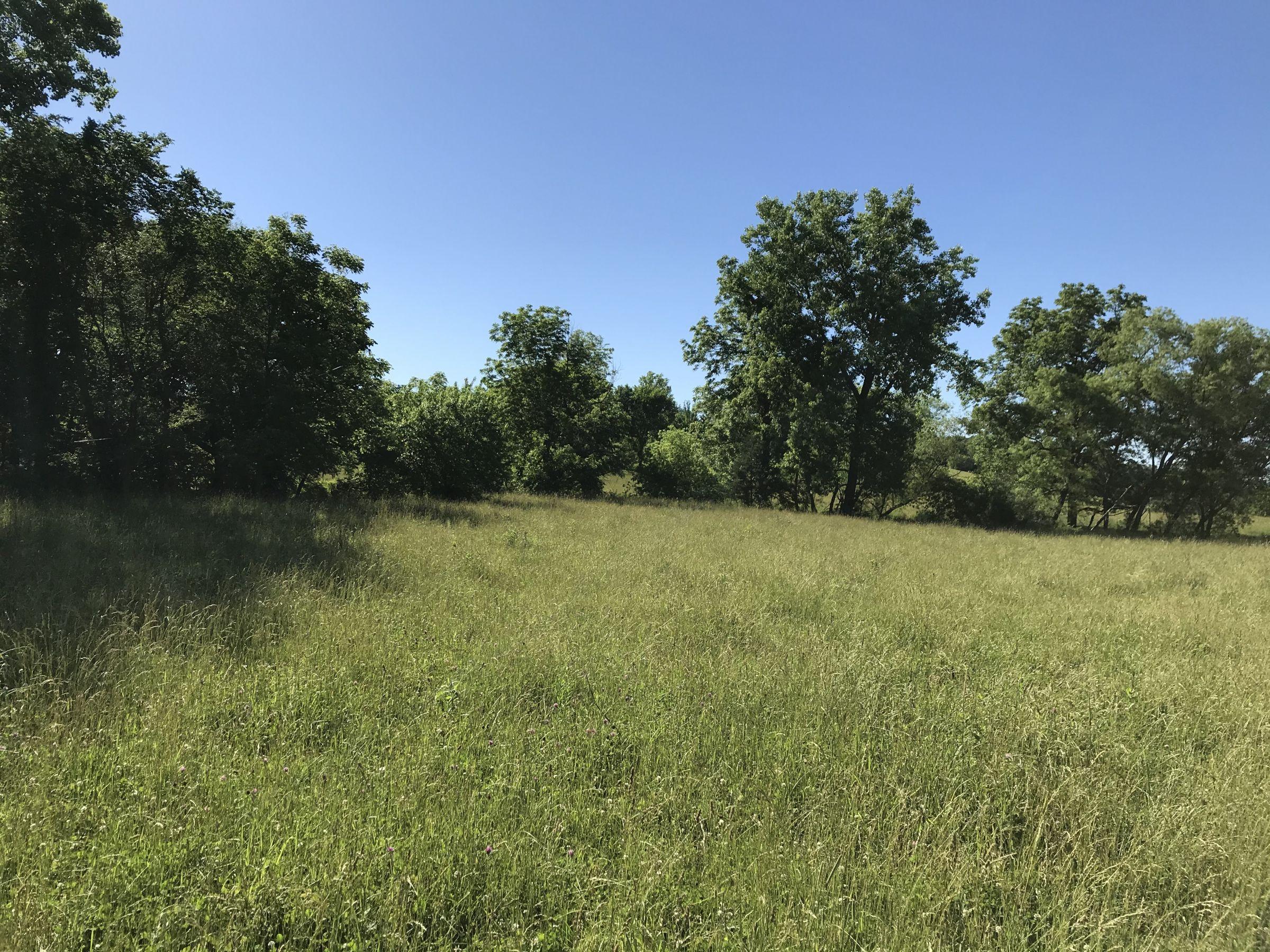 land-warren-county-iowa-60-acres-listing-number-15033-5-2020-06-14-151757.JPG