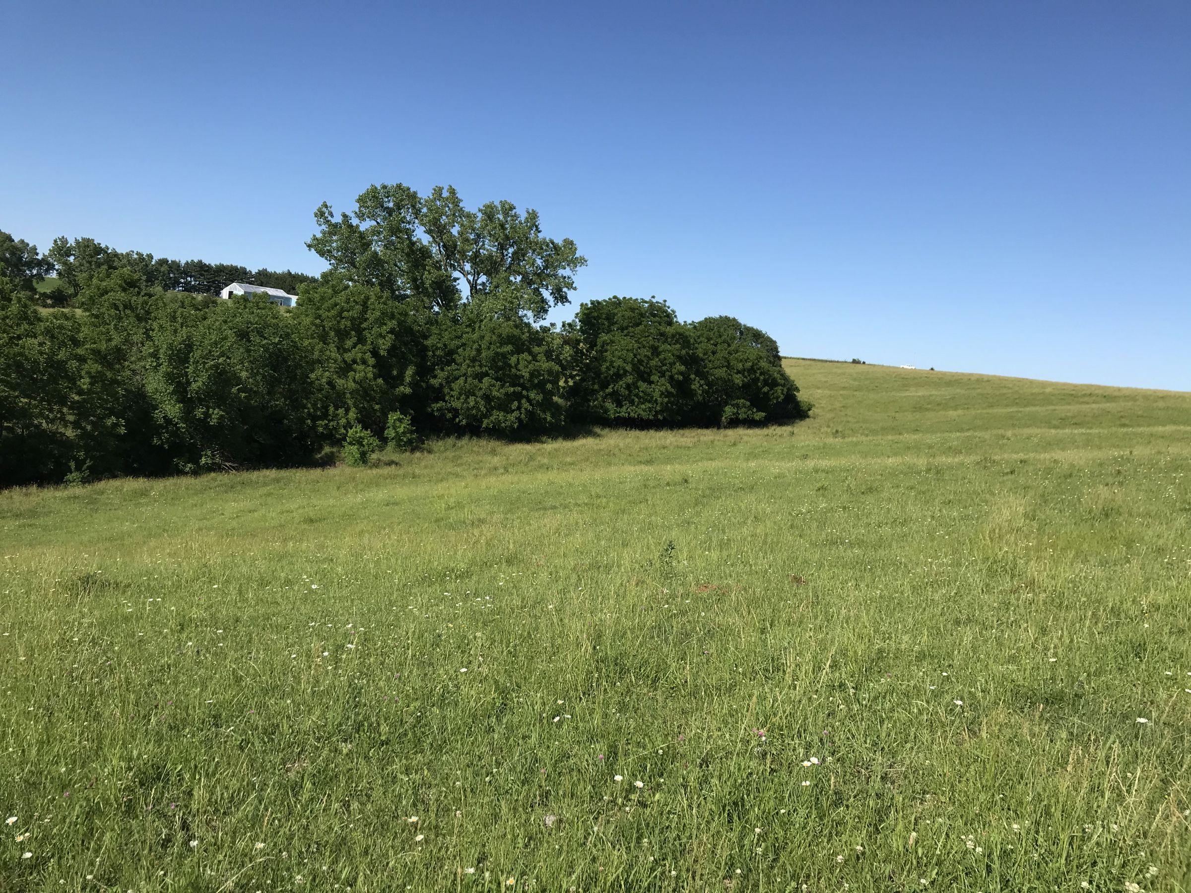 land-warren-county-iowa-60-acres-listing-number-15033-6-2020-06-14-151758.JPG